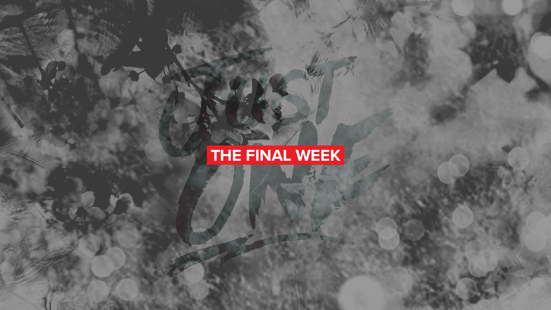 The Final Week (2018)