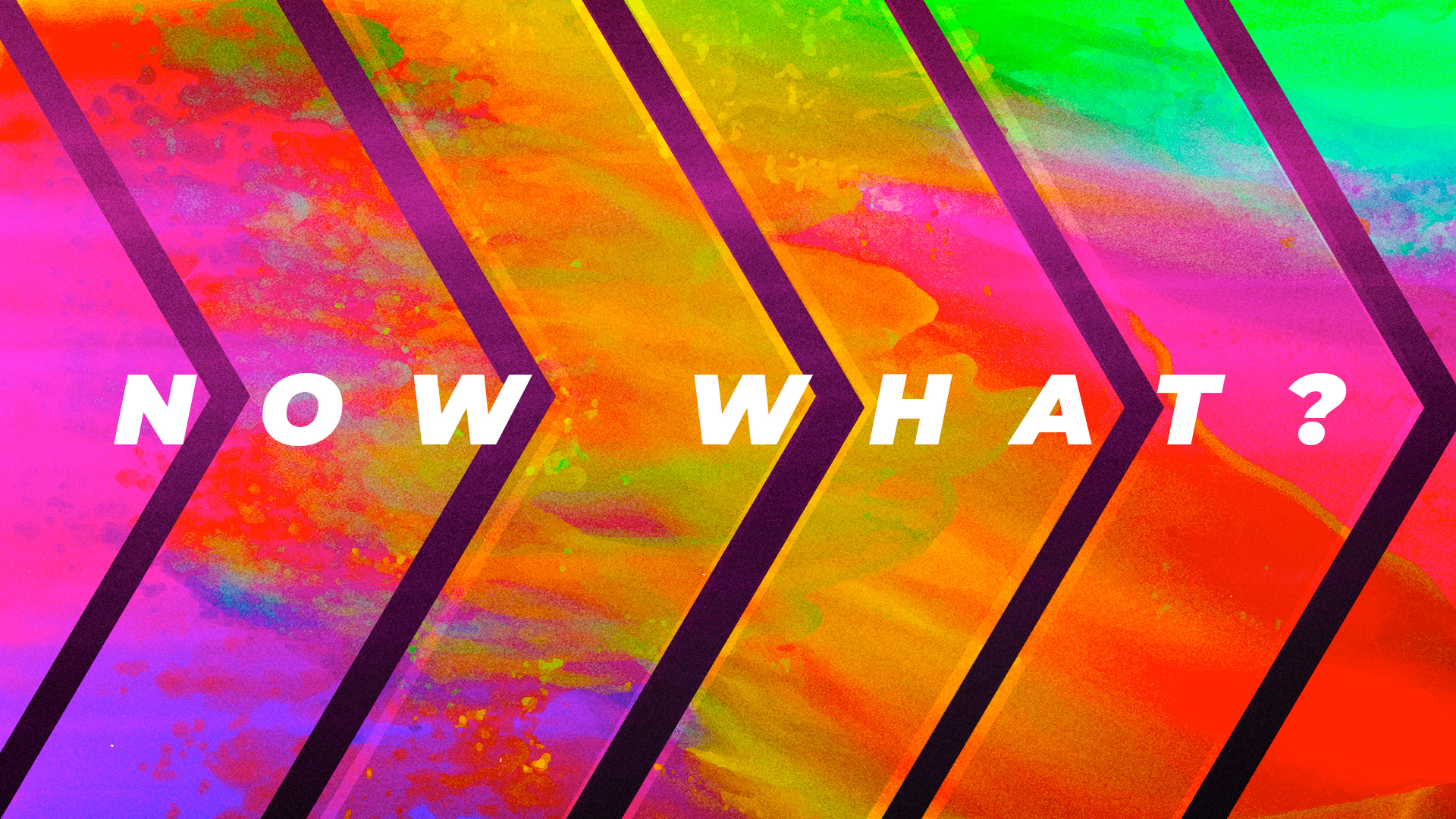 Now What? (2019)