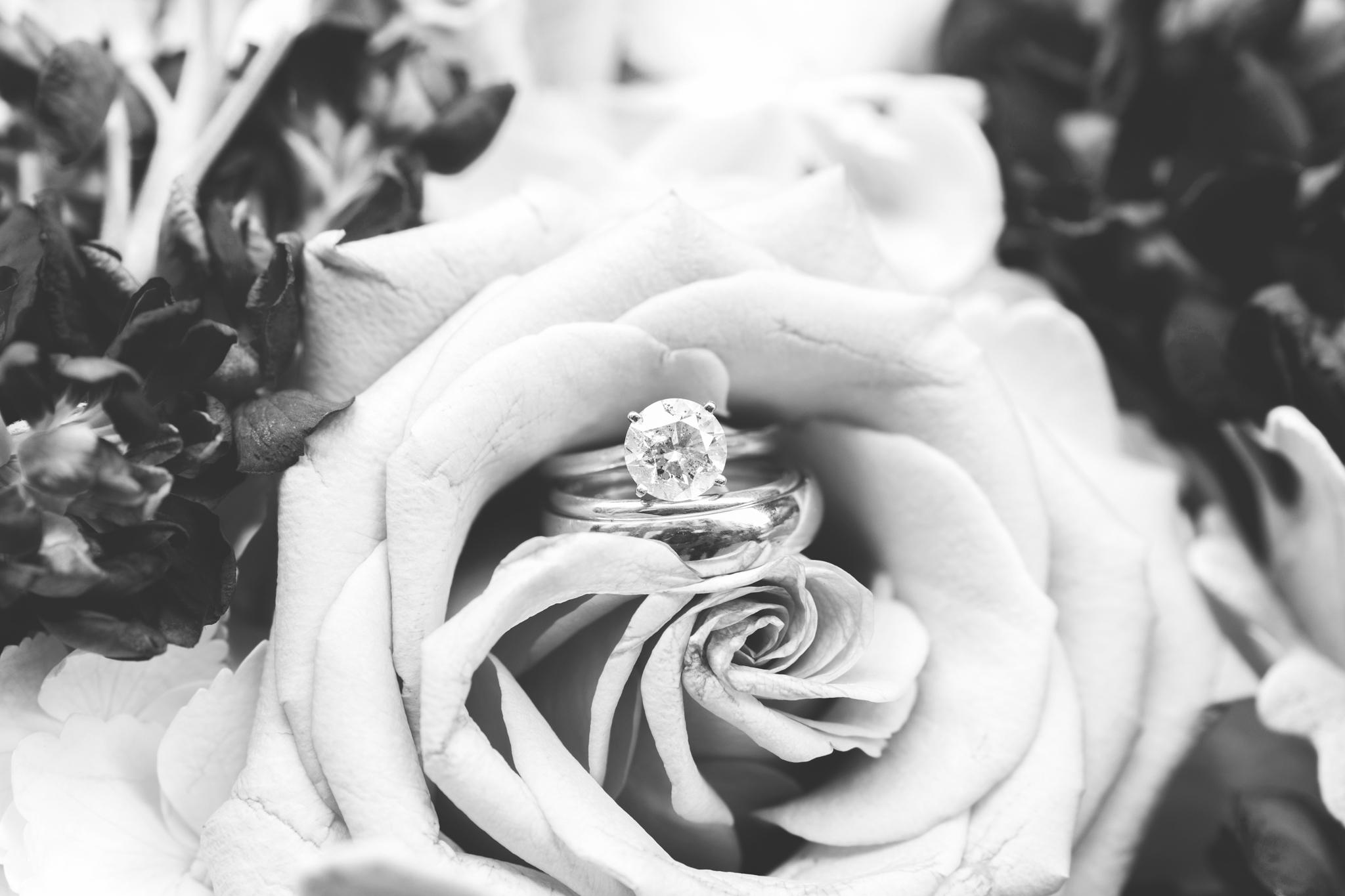 2018_Wedding_Puffenbarger_Blog-108.jpg