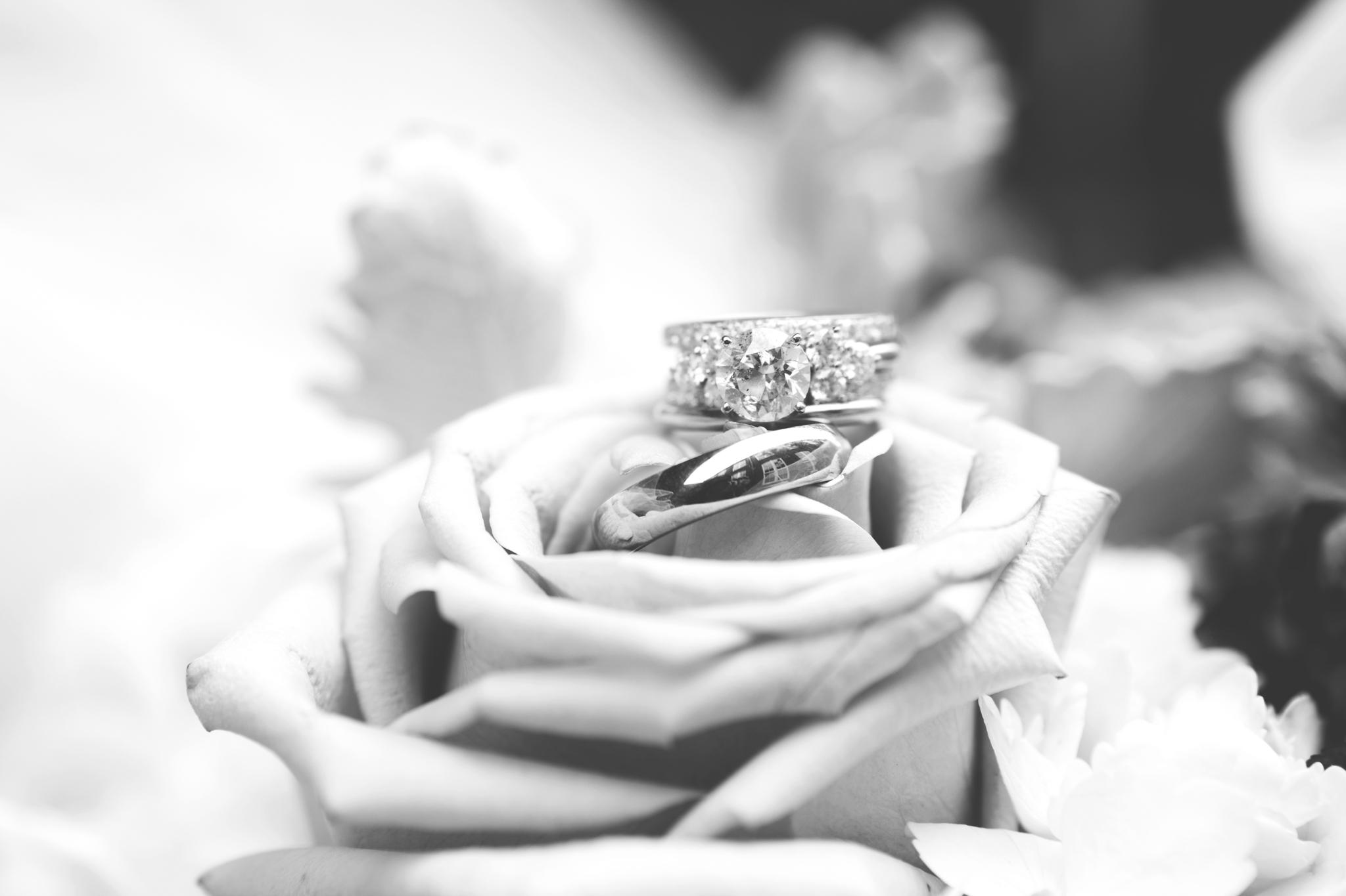 2018_Wedding_Puffenbarger_Blog-125.jpg