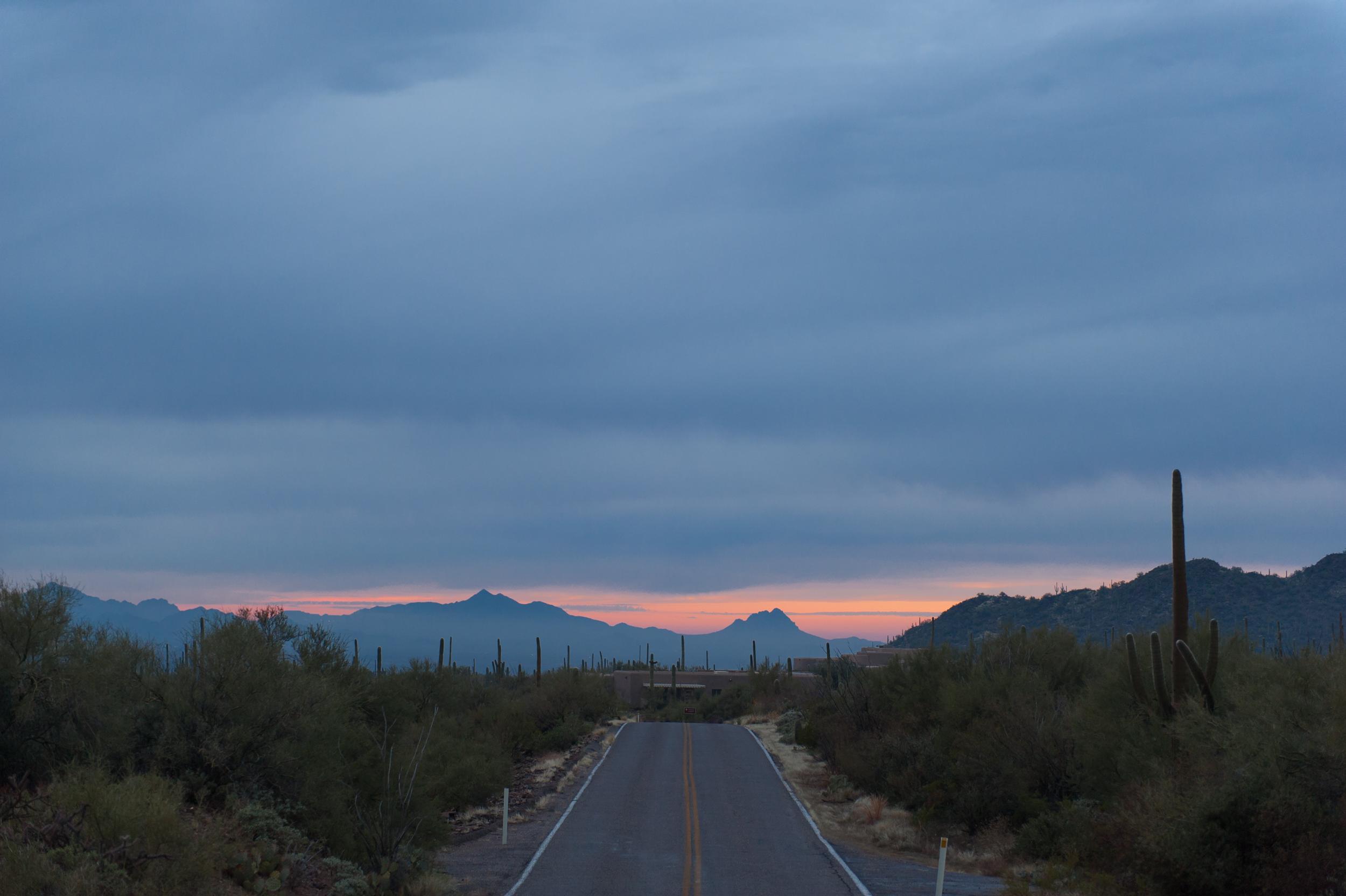 saguaro-sunset-5.jpg