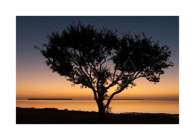 everglades-sunrise.jpg