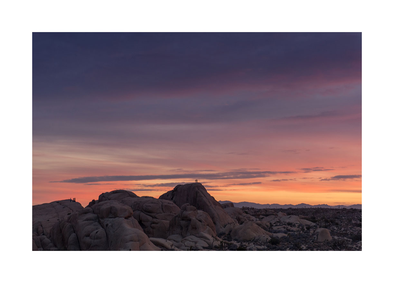 joshua-tree-sunset.jpg