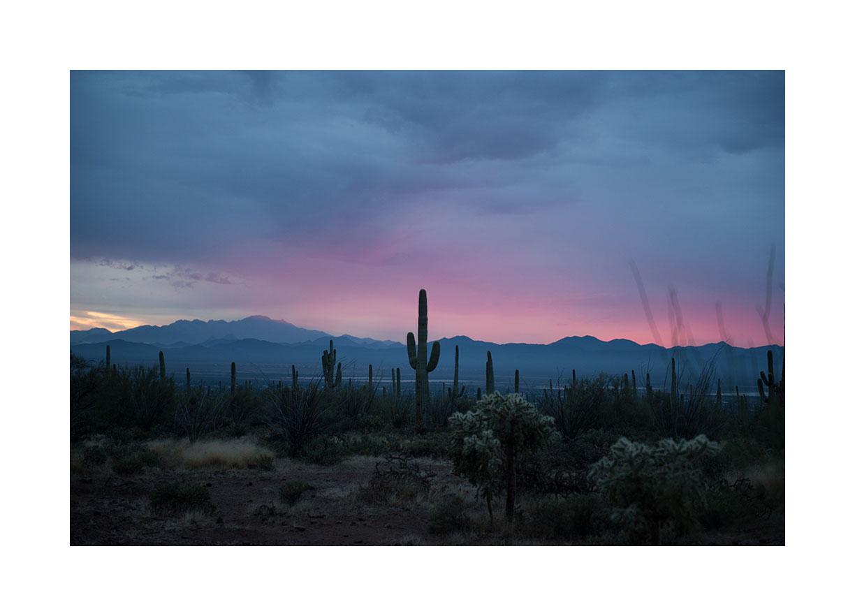 saguaro-sunset.jpg