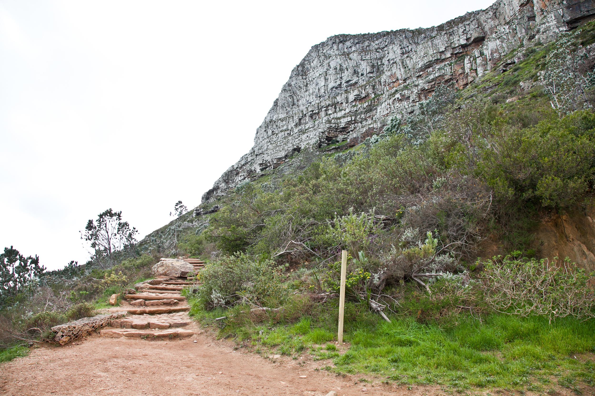 IMG_5016-hiking-lions-head-cape-town-trisa-taro.jpg