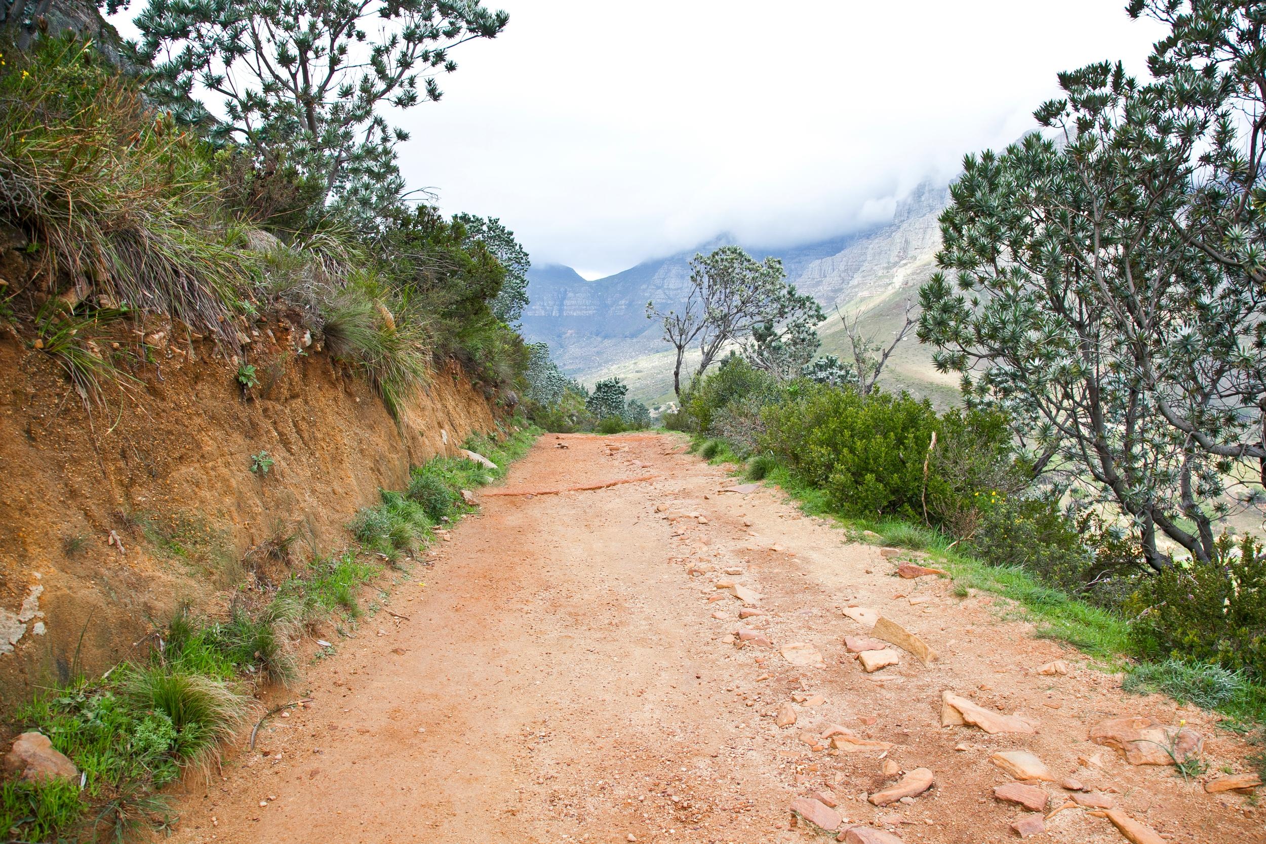 IMG_5011-hiking-lions-head-cape-town-trisa-taro.jpg