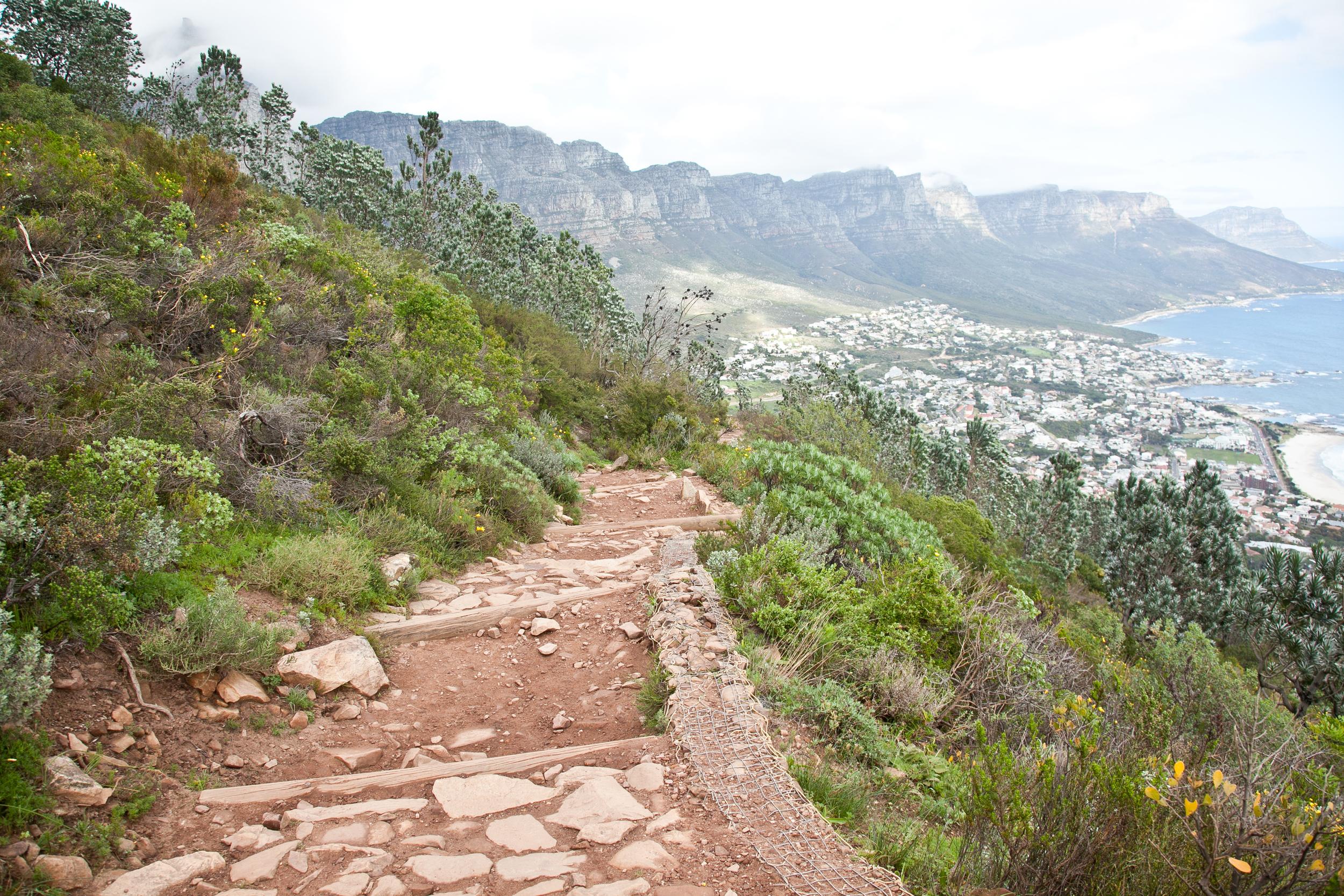 IMG_5021-hiking-lions-head-cape-town-trisa-taro.jpg