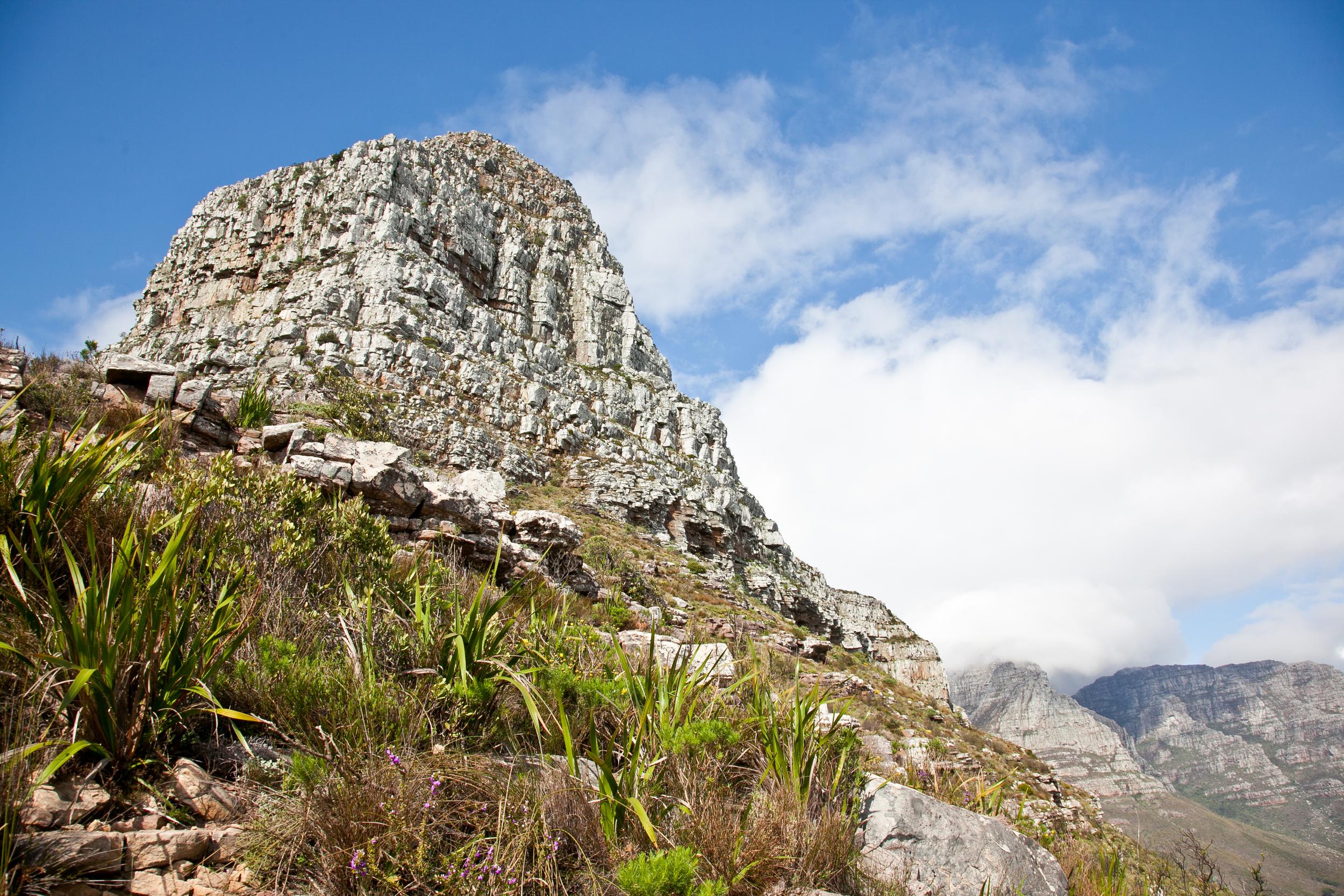IMG_5027-hiking-lions-head-cape-town-trisa-taro.jpg