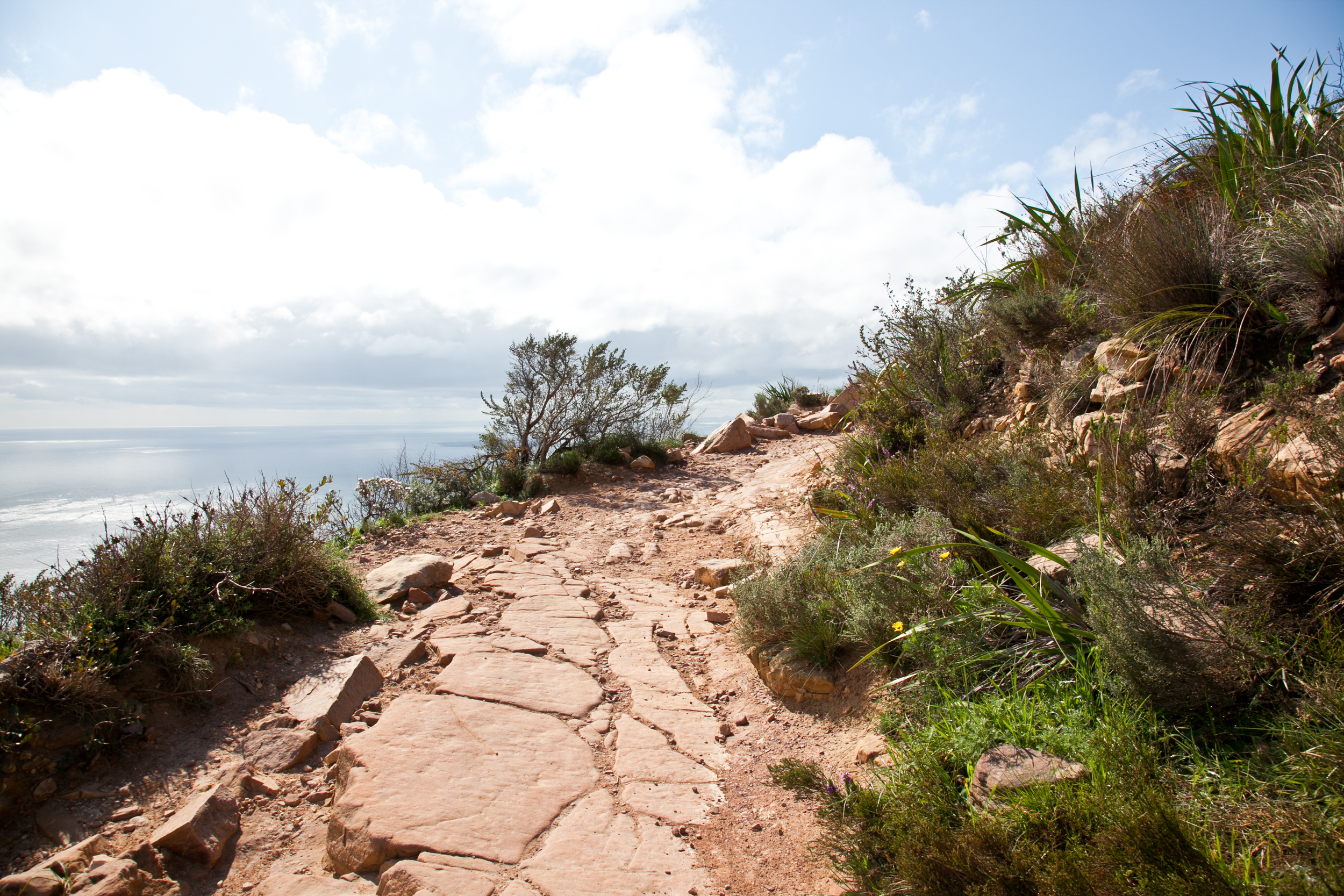 IMG_5028-hiking-lions-head-cape-town-trisa-taro.jpg