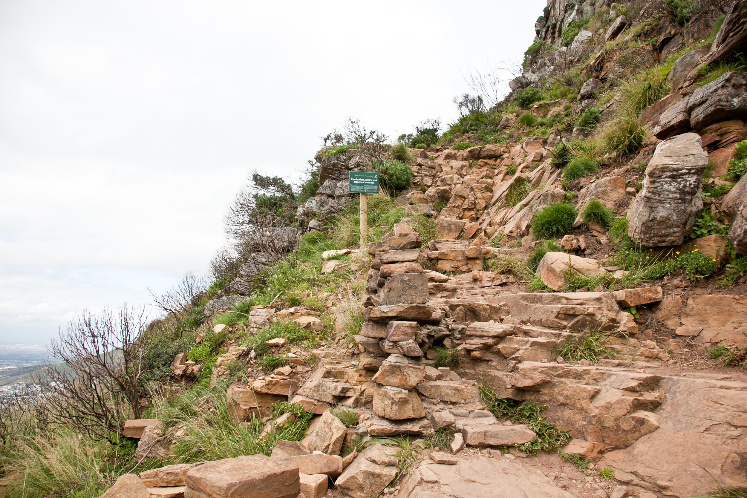 IMG_5038-hiking-lions-head-cape-town-trisa-taro.jpg