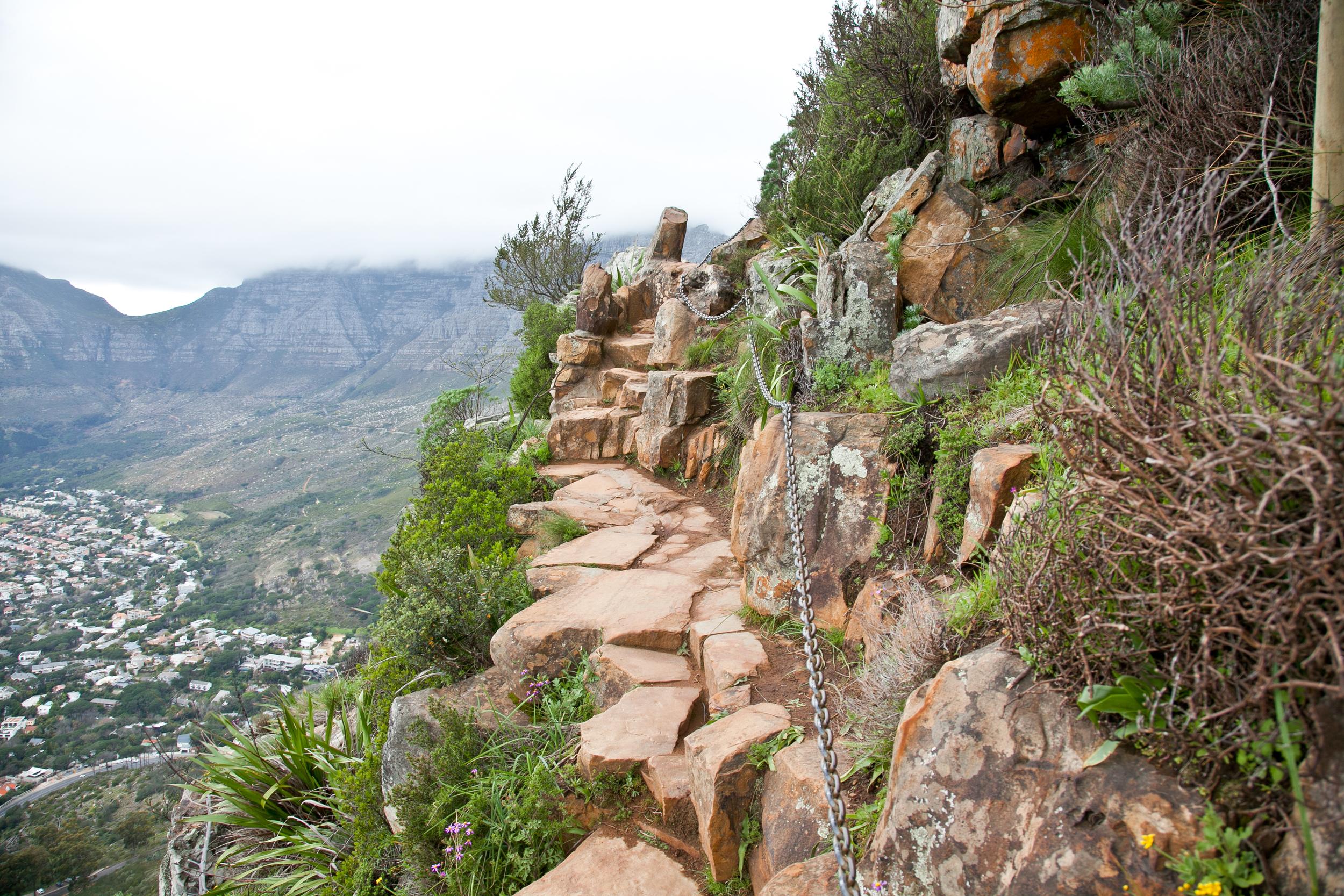 IMG_5042-hiking-lions-head-cape-town-trisa-taro.jpg