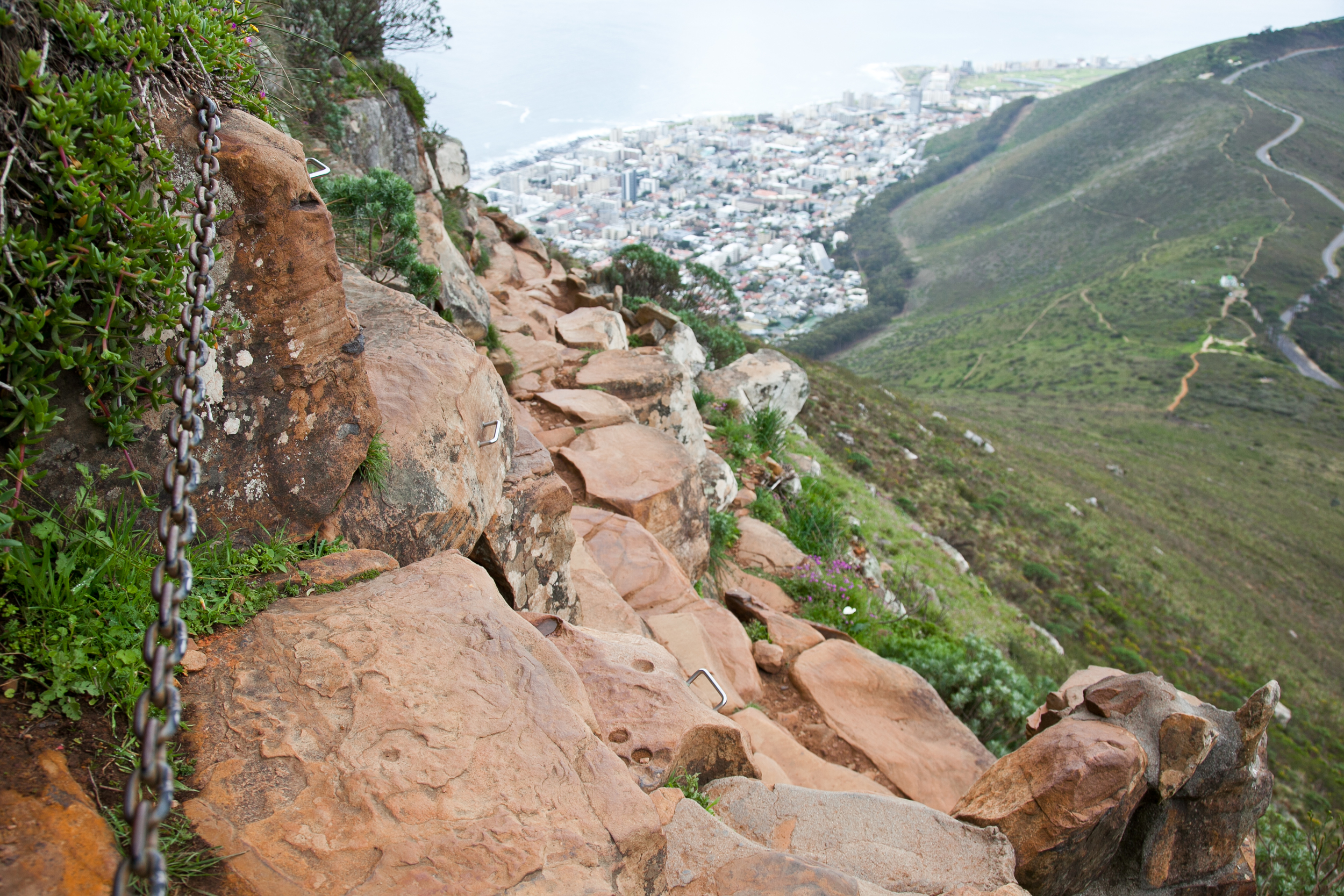 IMG_5043-hiking-lions-head-cape-town-trisa-taro.jpg
