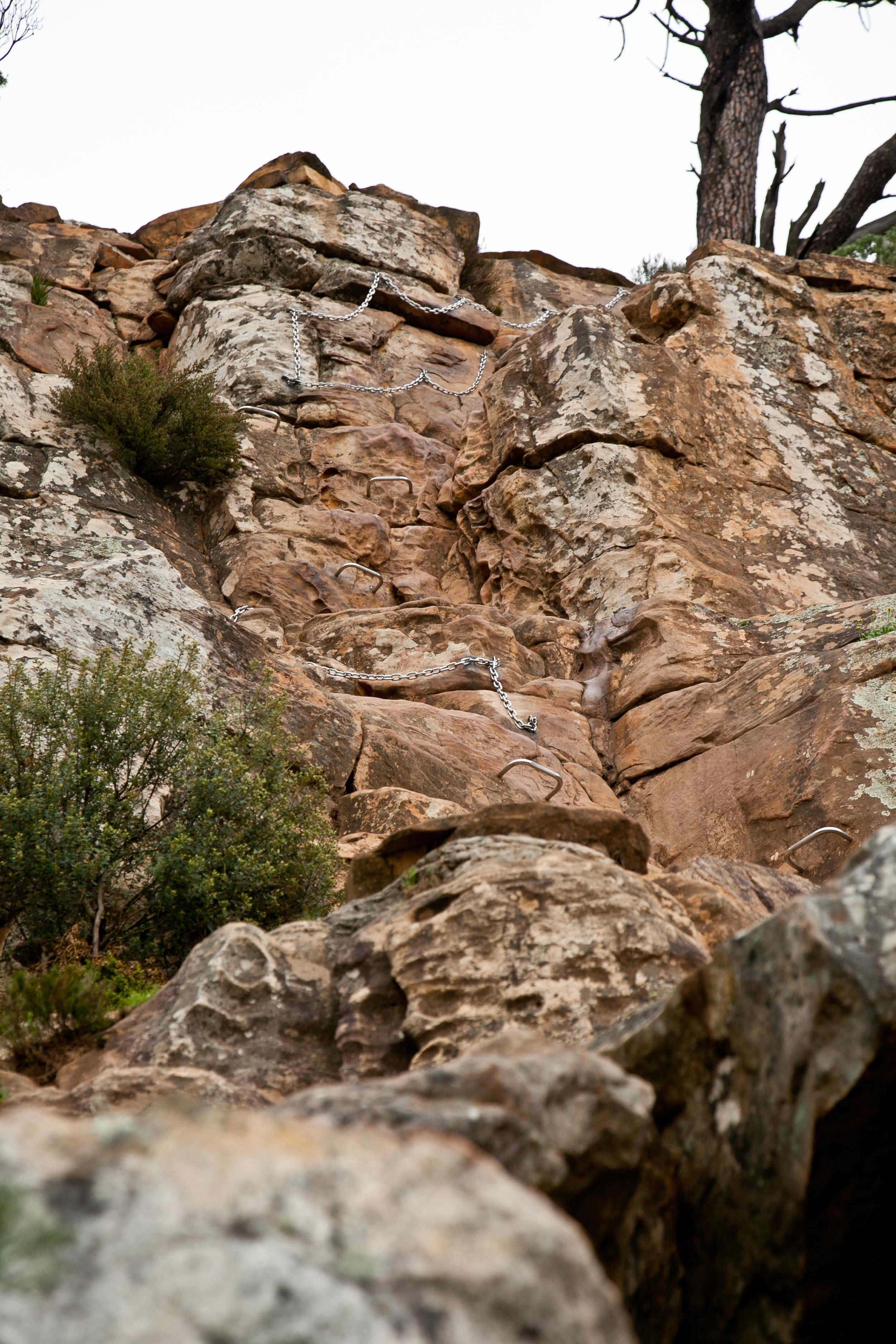 IMG_5046-hiking-lions-head-cape-town-trisa-taro.jpg