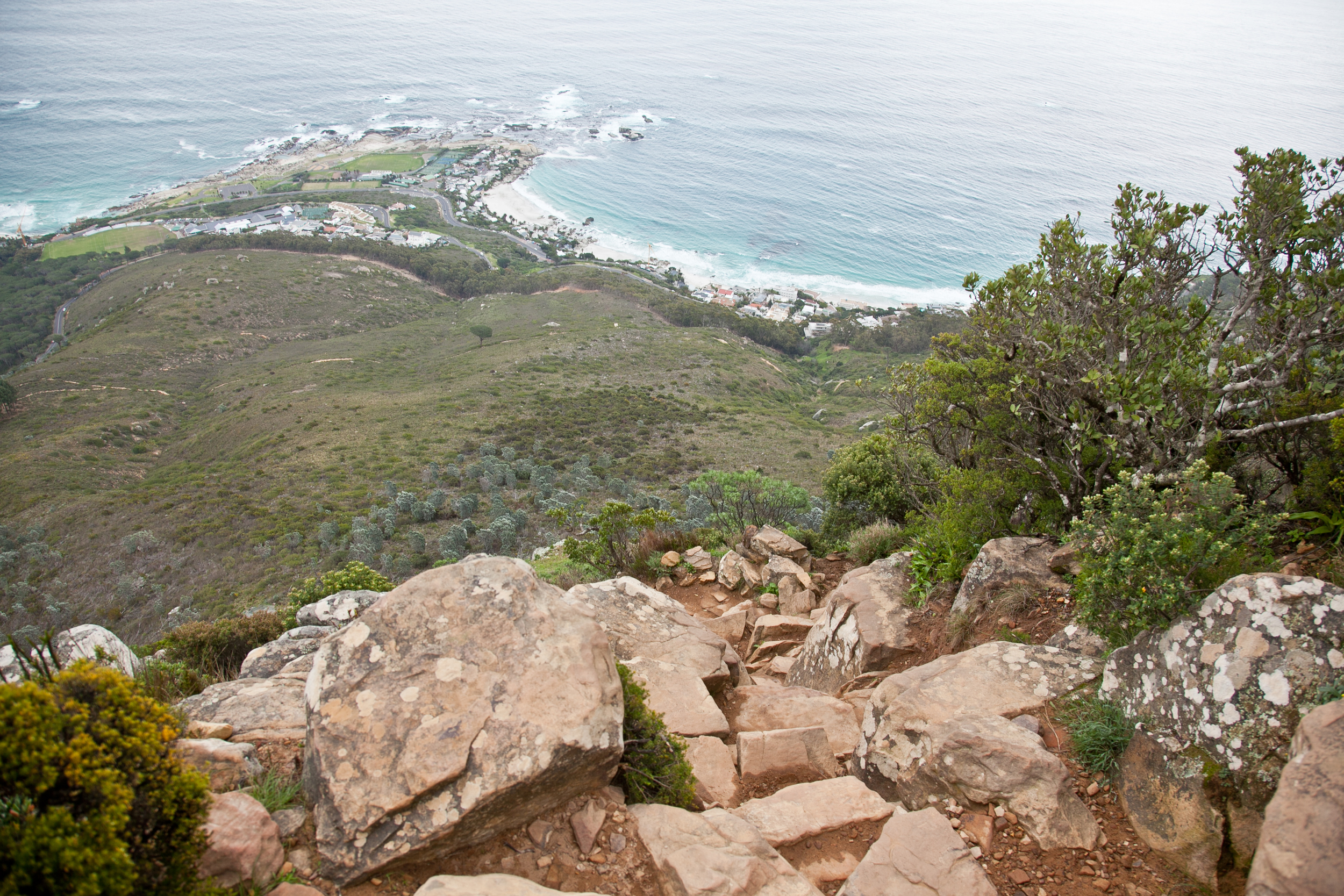 IMG_5057-hiking-lions-head-cape-town-trisa-taro.jpg