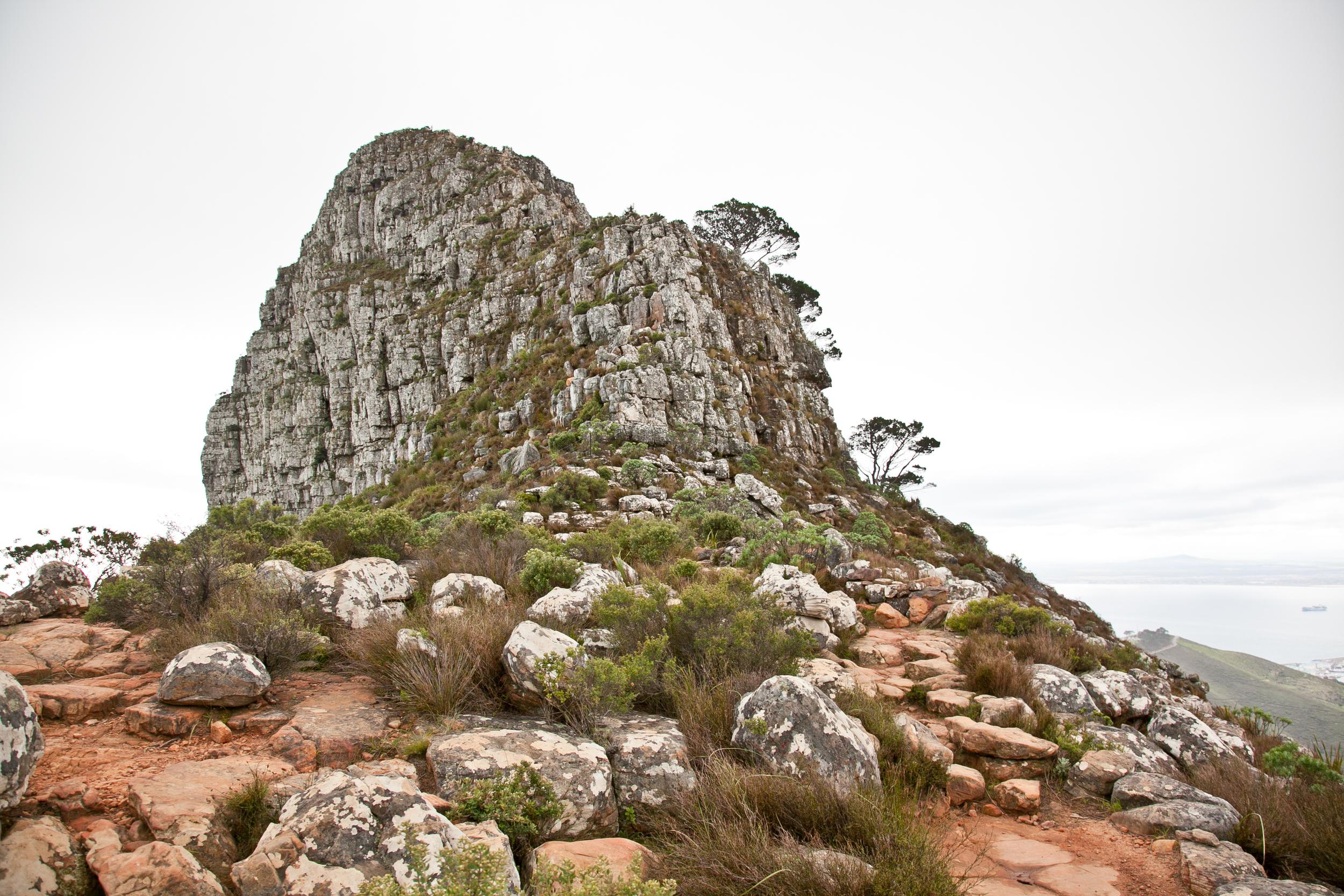 IMG_5058-hiking-lions-head-cape-town-trisa-taro.jpg