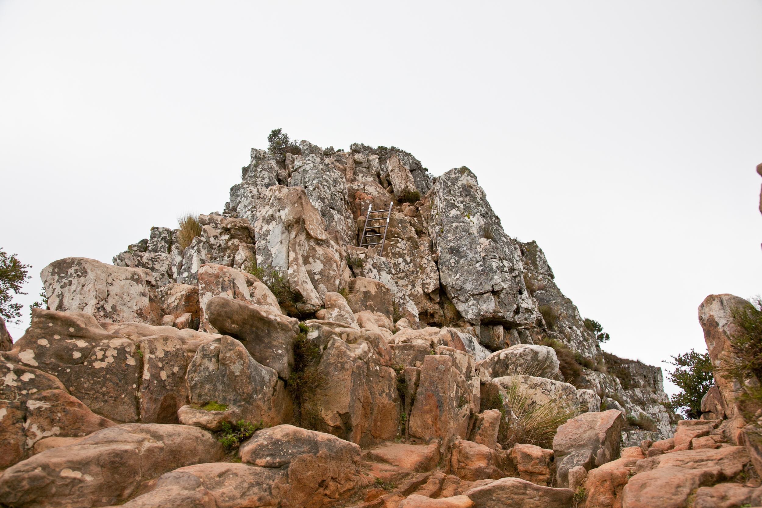 IMG_5061-hiking-lions-head-cape-town-trisa-taro.jpg