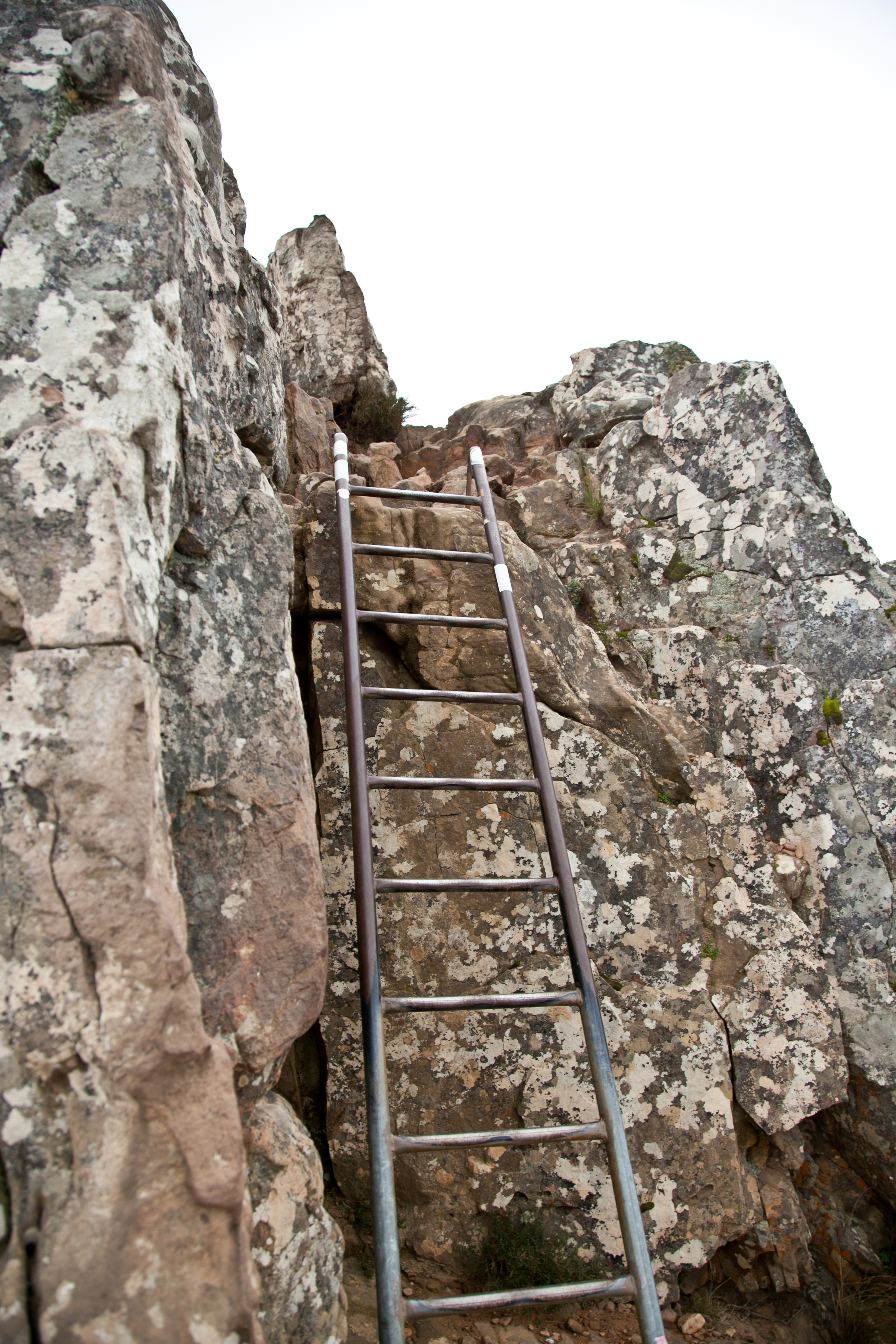 IMG_5064-hiking-lions-head-cape-town-trisa-taro.jpg