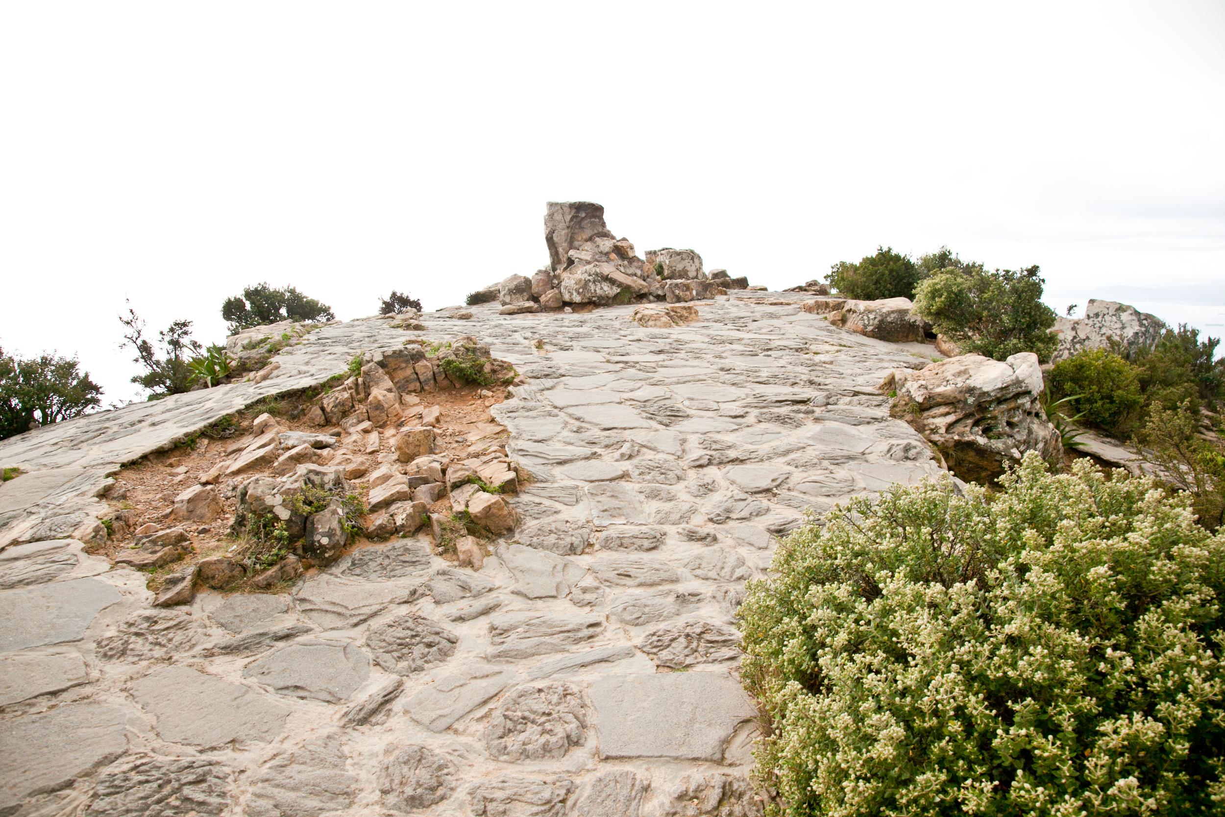 IMG_5065-hiking-lions-head-cape-town-trisa-taro.jpg