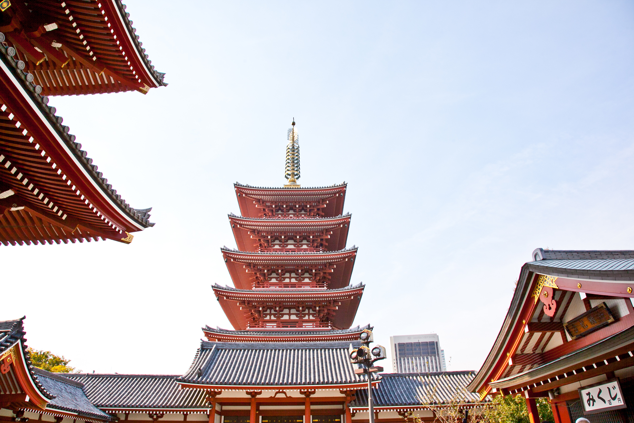 IMG_6522-tokyo-japan-trisa-taro.jpg