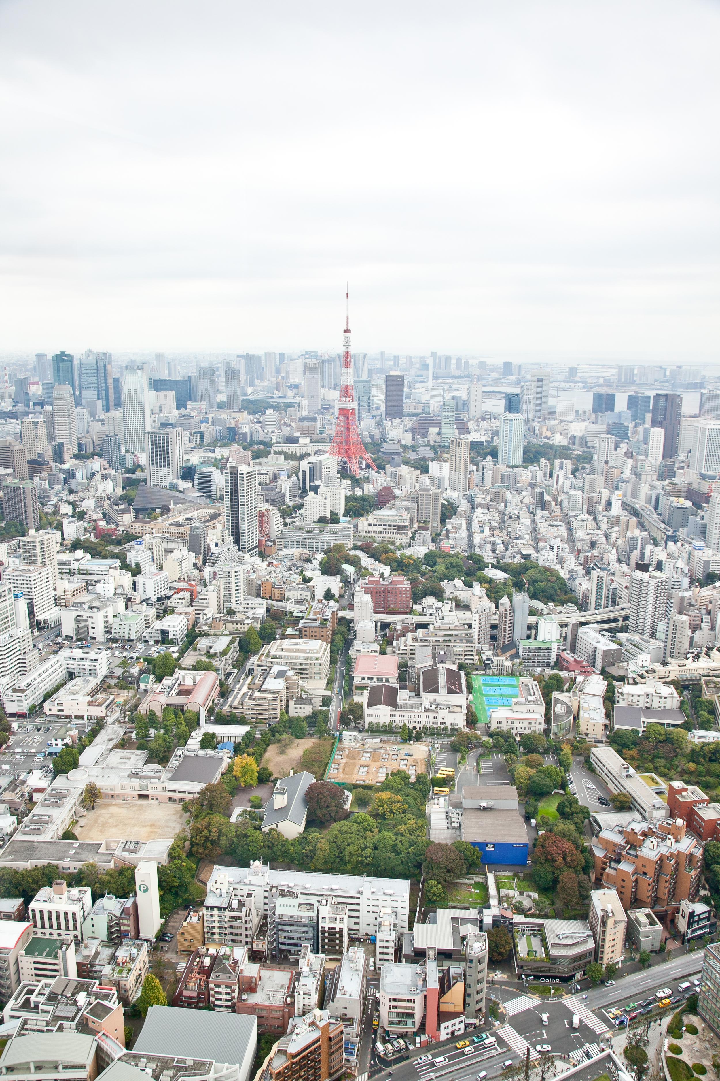 IMG_6593-tokyo-japan-trisa-taro.jpg