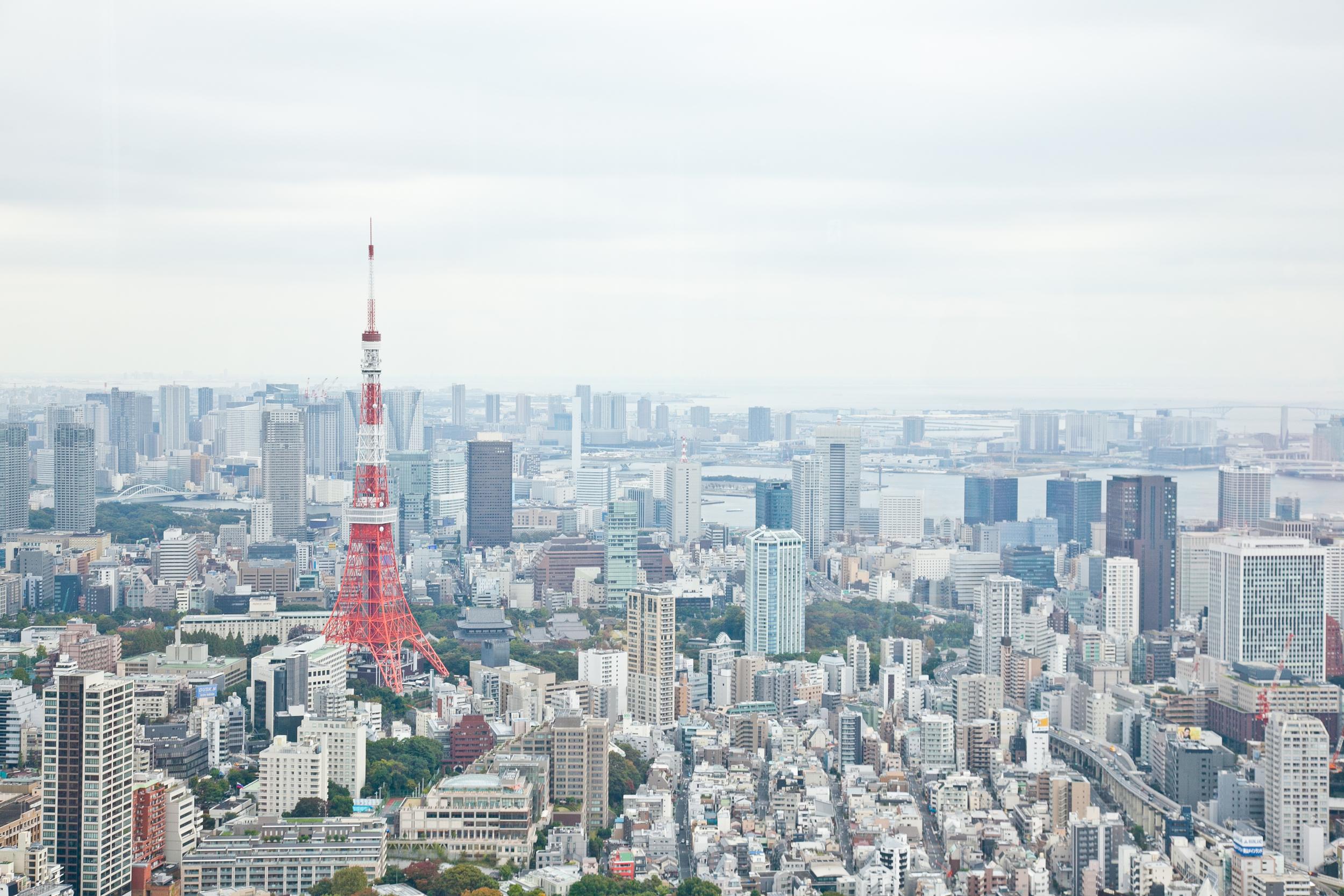 IMG_6598-tokyo-japan-trisa-taro.jpg