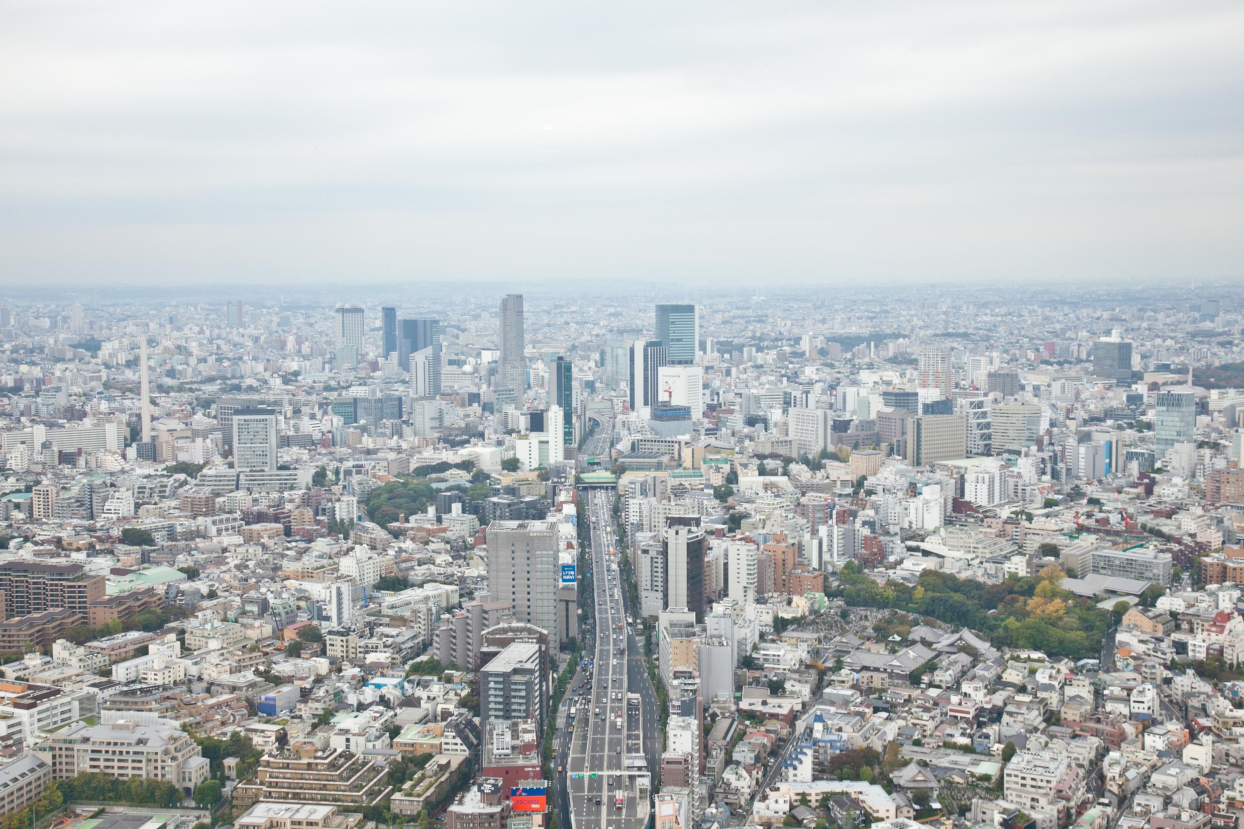 IMG_6644-tokyo-japan-trisa-taro.jpg