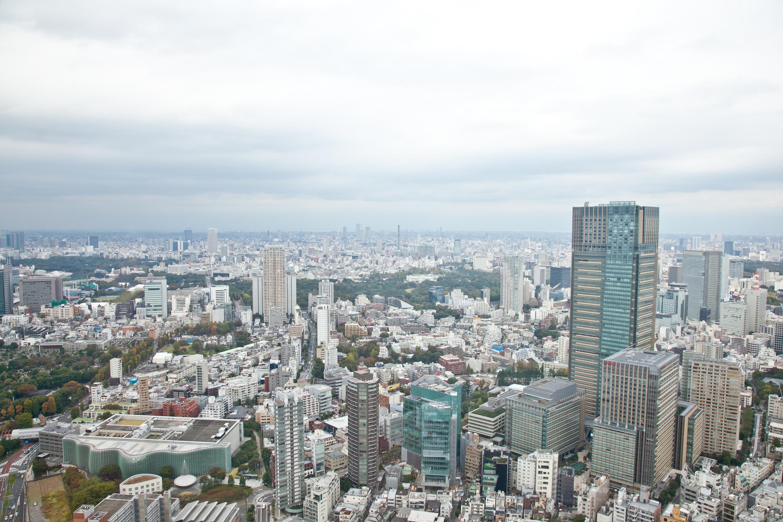 IMG_6654-tokyo-japan-trisa-taro.jpg