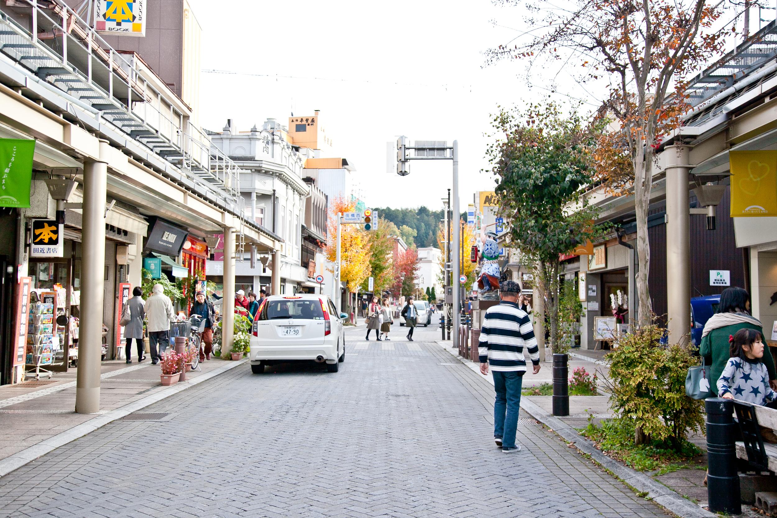 IMG_6734-takayama-japan-alps-trisa-taro.jpg