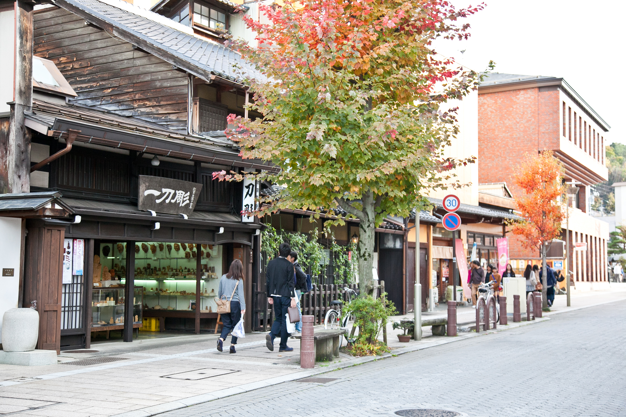 IMG_6738-takayama-japan-alps-trisa-taro.jpg
