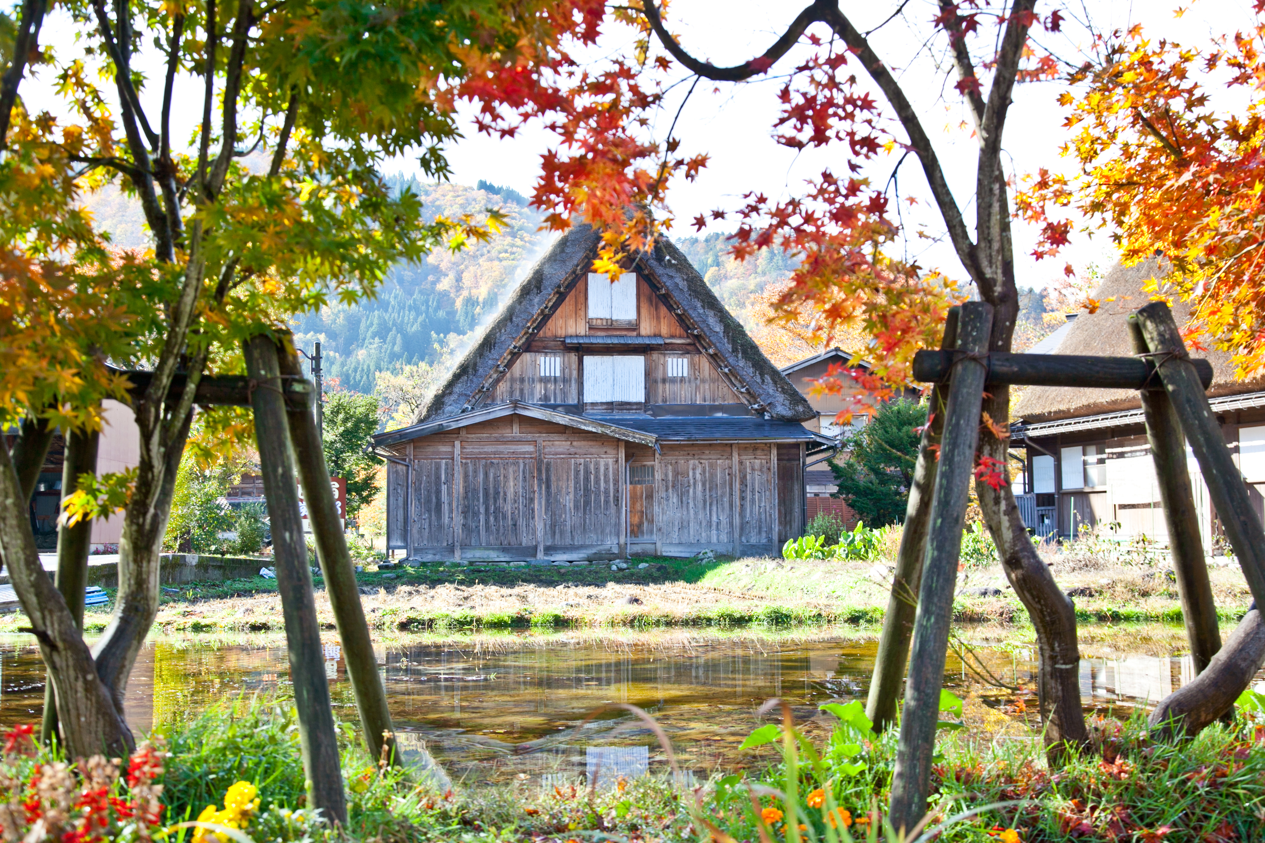 IMG_6911-shirakawa-go-takayama-japan-alps-trisa-taro.jpg