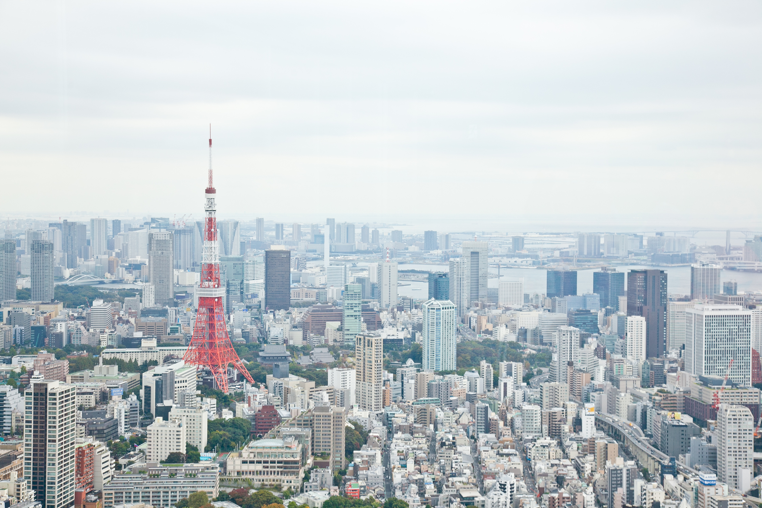 Tokyo Tower  (as seen from Tokyo City View)
