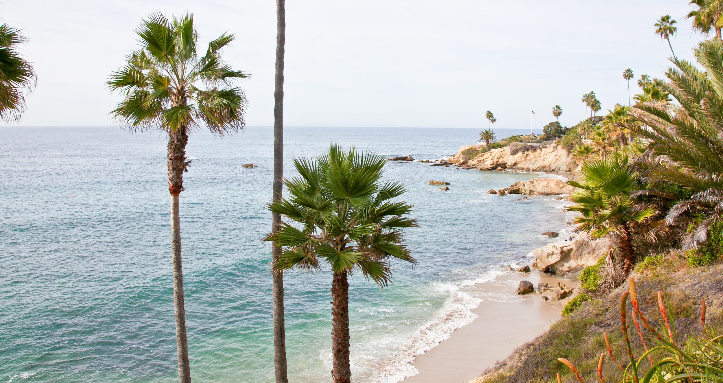 trisa-taro-laguna-beach-cove.jpg