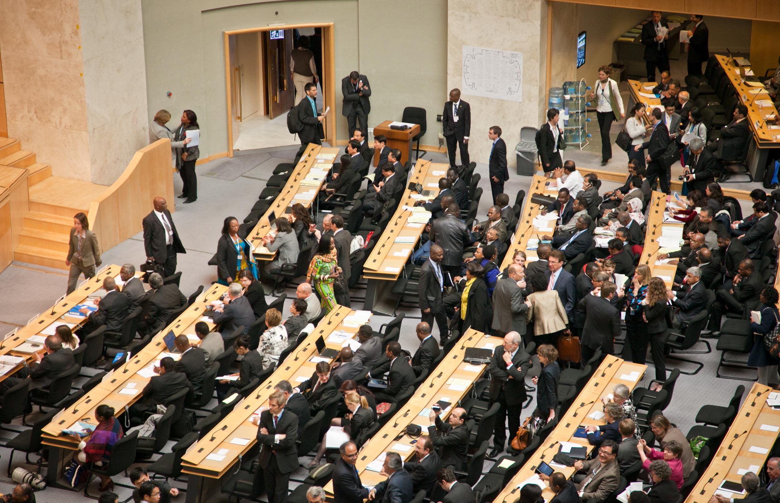 trisa-taro-delegates-world-health-assembly-2013.jpg
