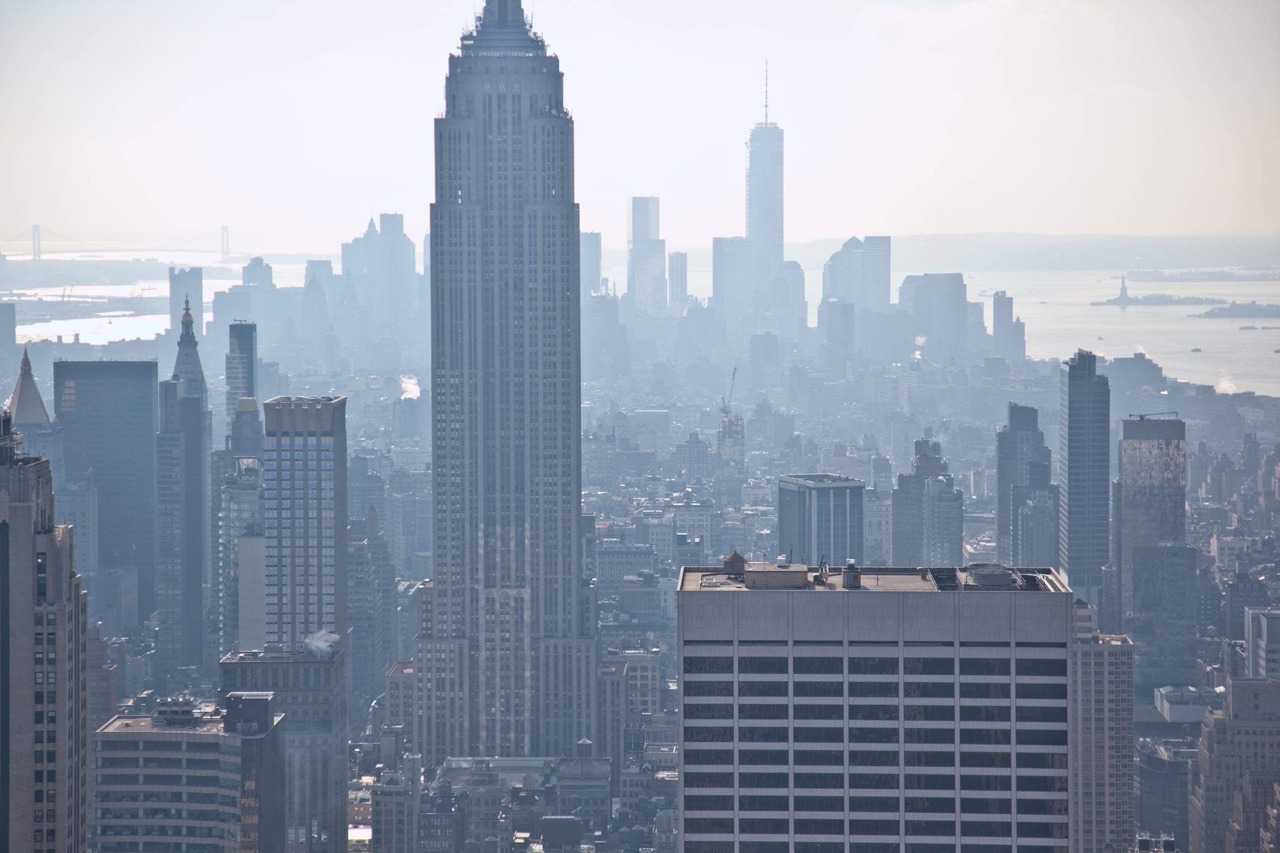 trisa-taro-downtown-manhattan-new york city.jpg