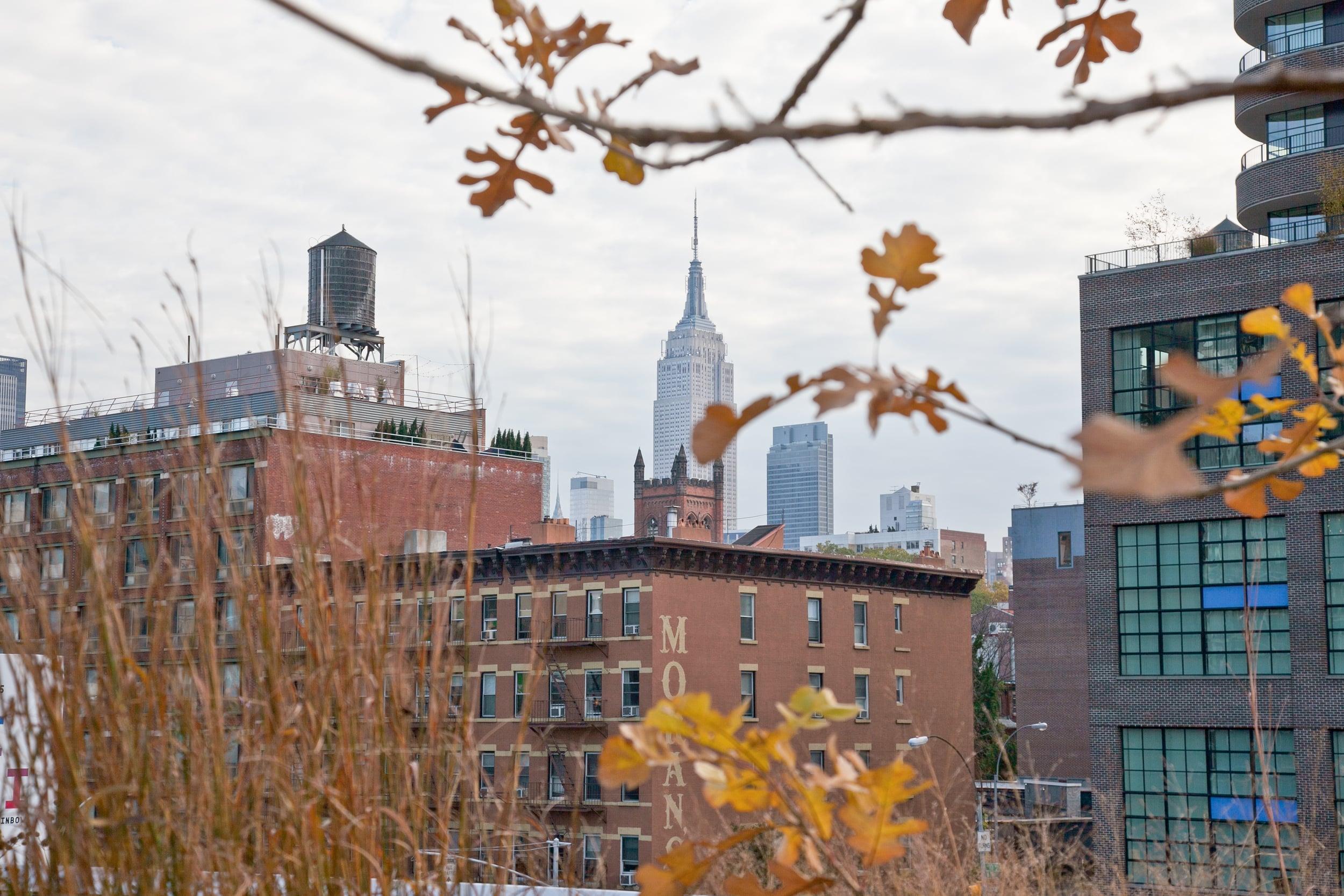 trisa-taro-empire state building-fall-new york city.jpg