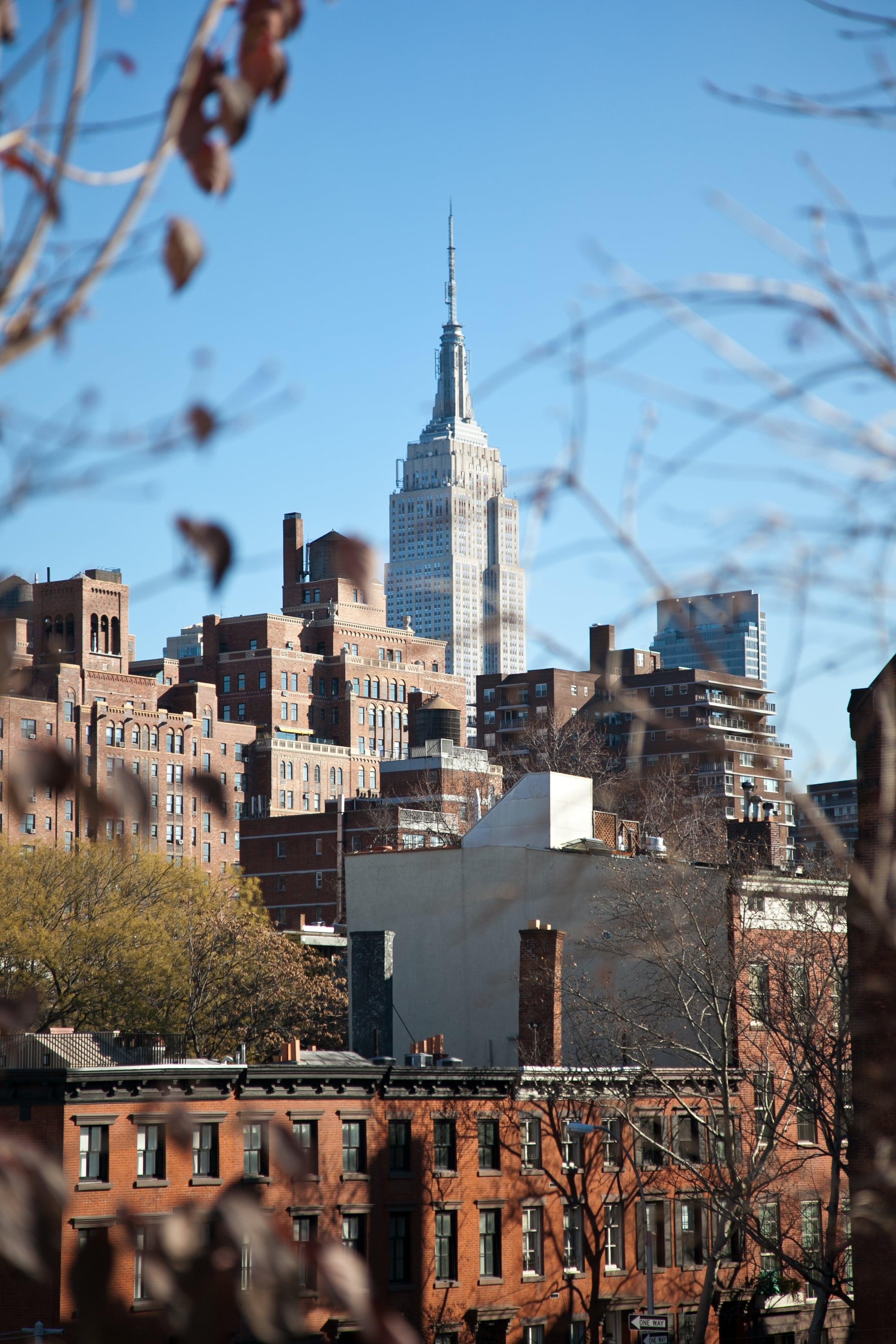trisa-taro-empire state building-winter-new york city.jpg