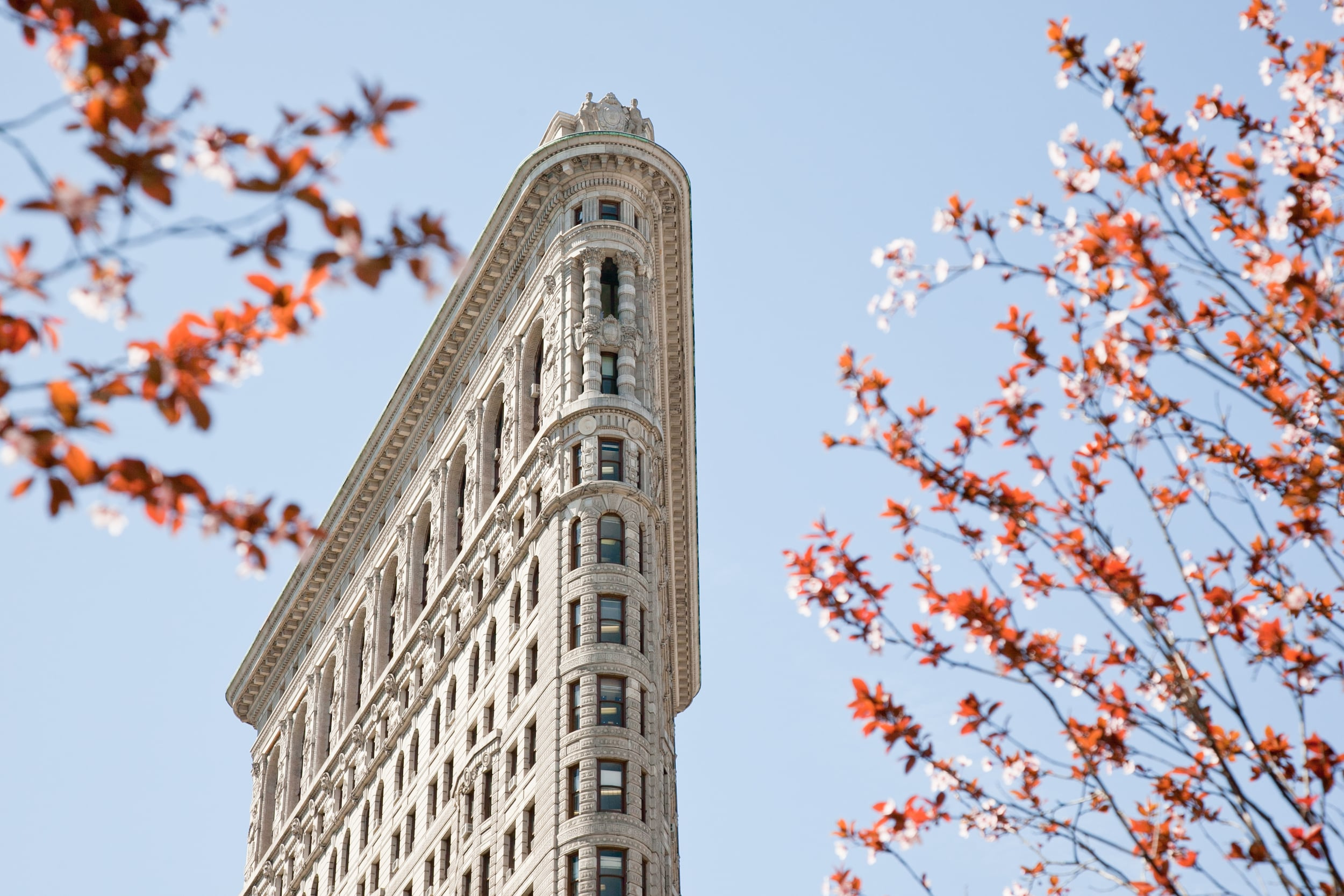 trisa-taro-flatiron-building-new york city.jpg