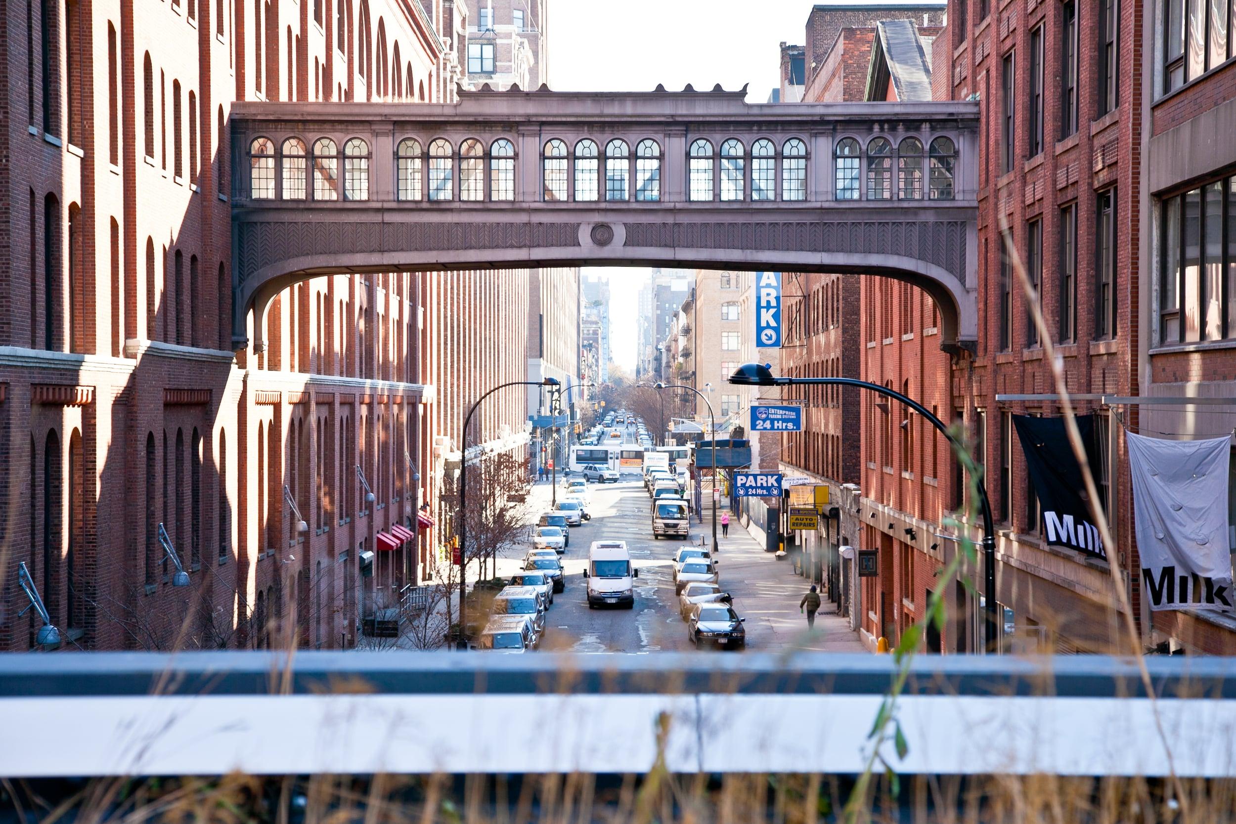 trisa-taro-high line-bridge-new york city.jpg