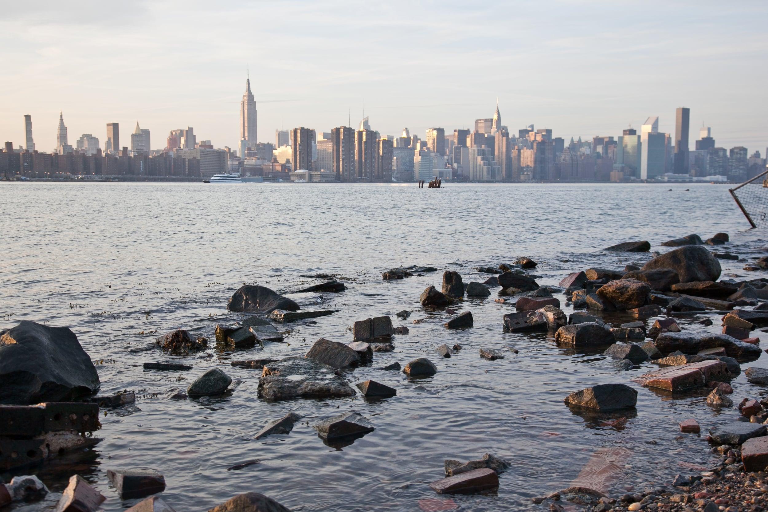 trisa-taro-manhattan-skyline-brooklyn-new york city.jpg