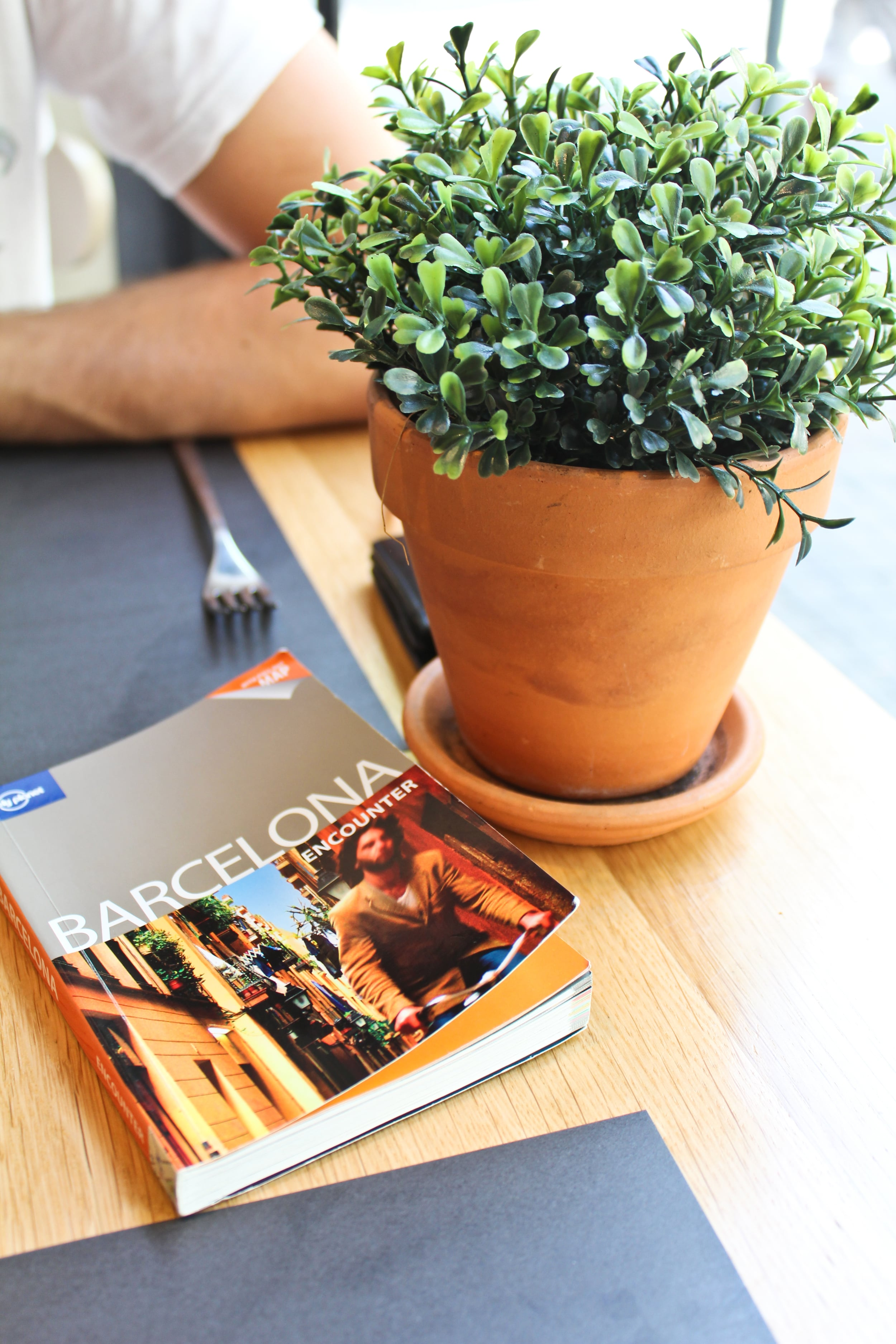 trisa-taro-barcelona-travel-guide-spain.jpg
