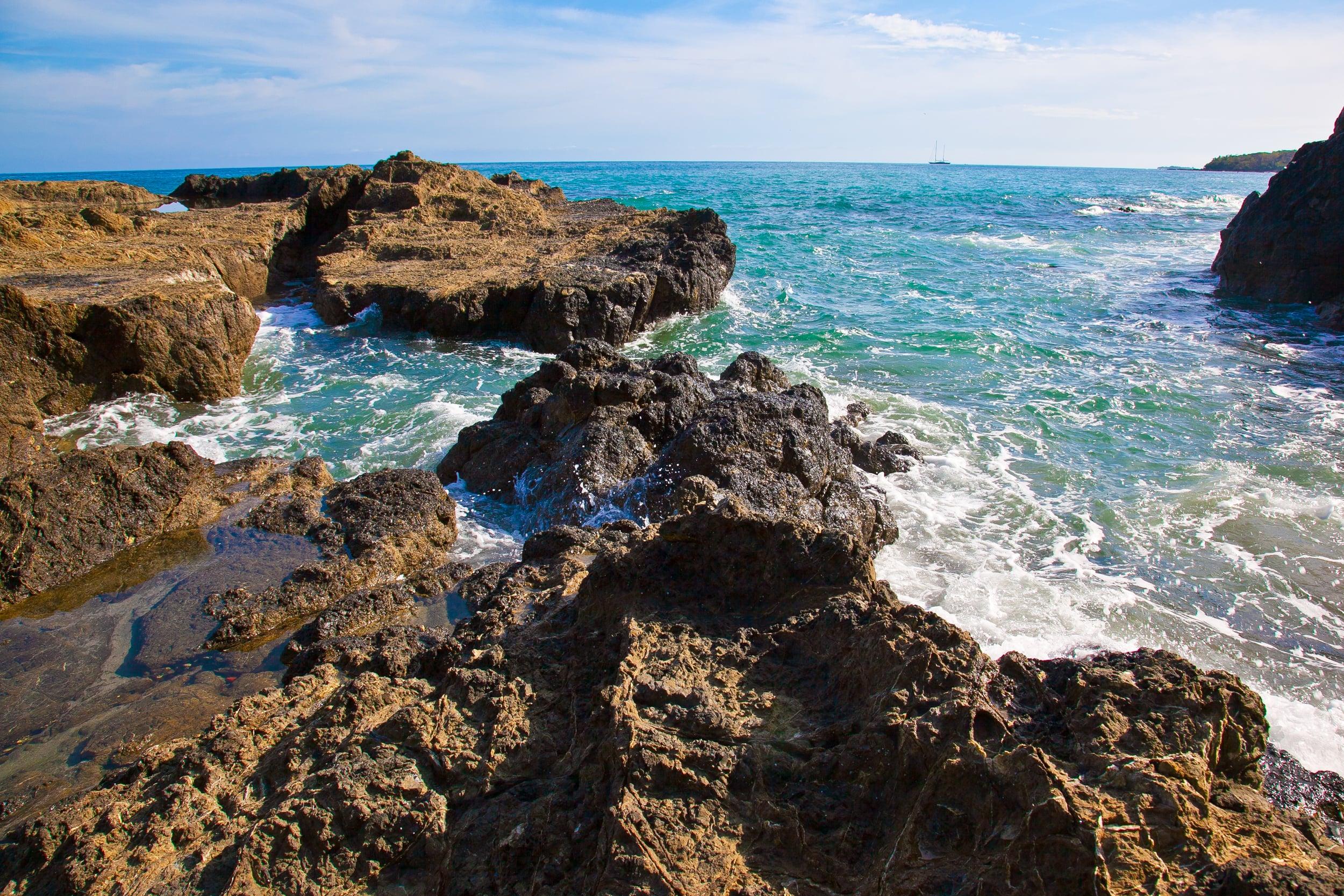 IMG_1225-trisa-taro-costa rica.jpg