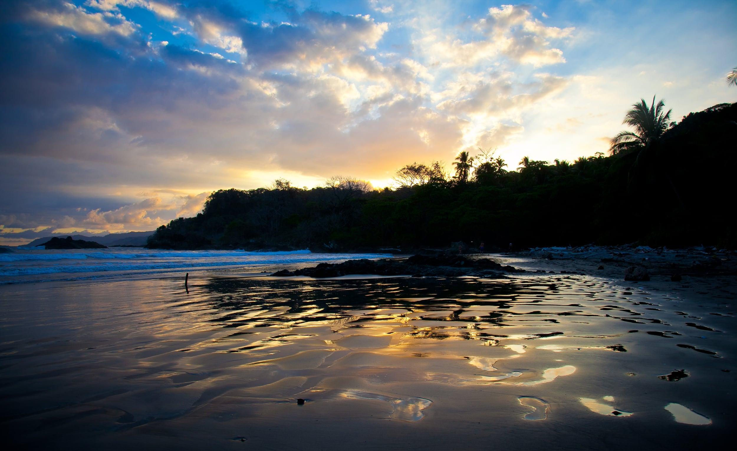 IMG_1498-trisa-taro-costa rica.jpg
