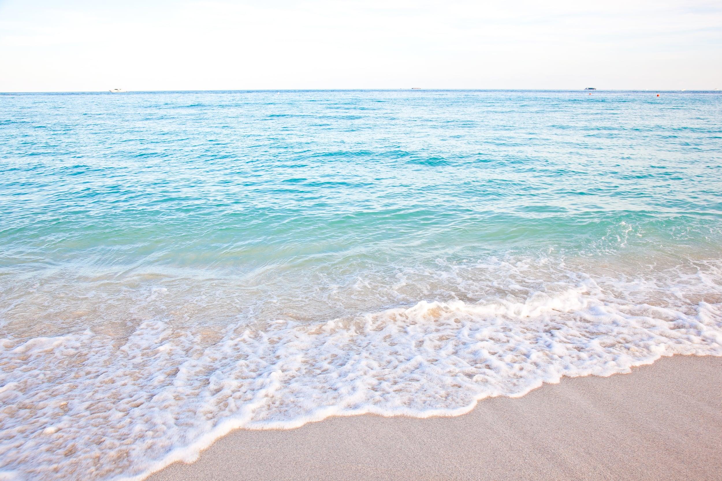 trisa-taro-south-beach-miami-water.jpg