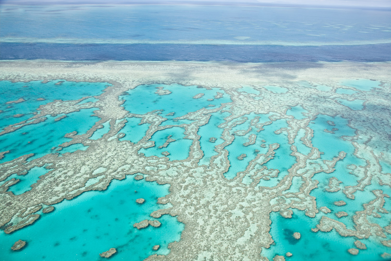 IMG_8143-whitsundays-airlie-beach-great-barrier-reef-flight.jpg