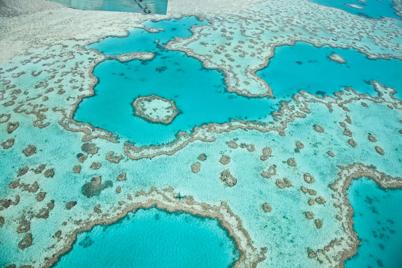 IMG_8164-whitsundays-airlie-beach-great-barrier-reef-flight.jpg