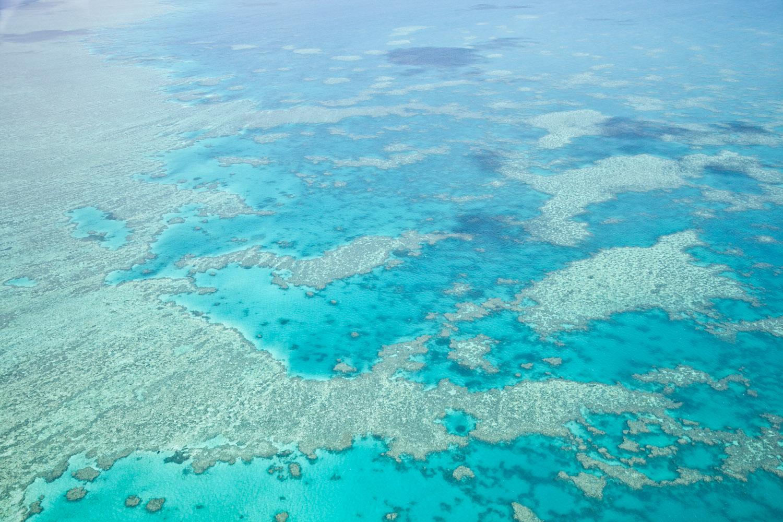 IMG_8174-whitsundays-airlie-beach-great-barrier-reef-flight.jpg