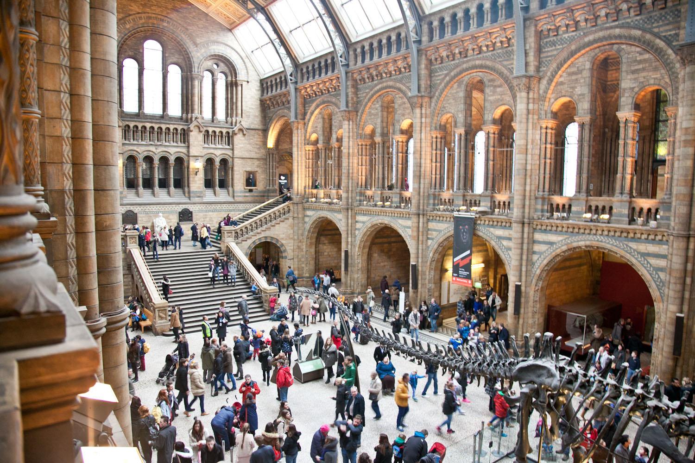 IMG_8345-london-england-natural-history-museum-free-trisa-taro.jpg