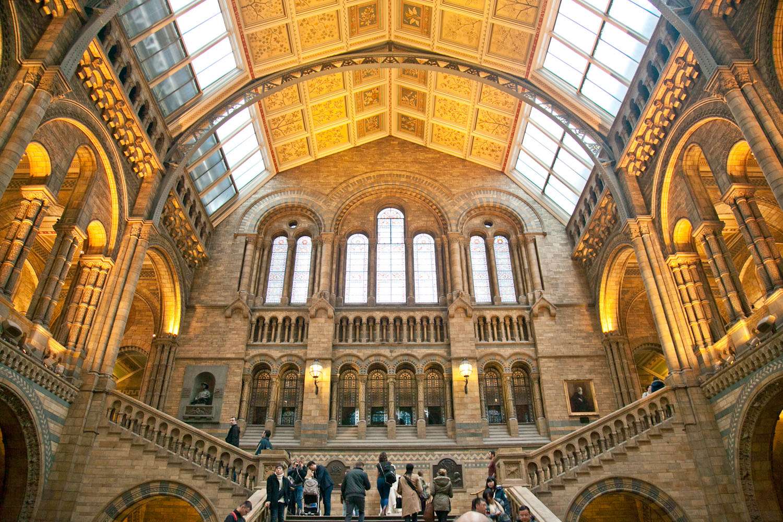 IMG_8362-london-england-natural-history-museum-free-trisa-taro.jpg