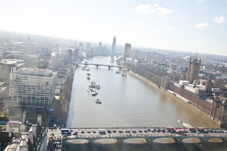 IMG_8691-london-england-london-eye-views-trisa-taro.jpg