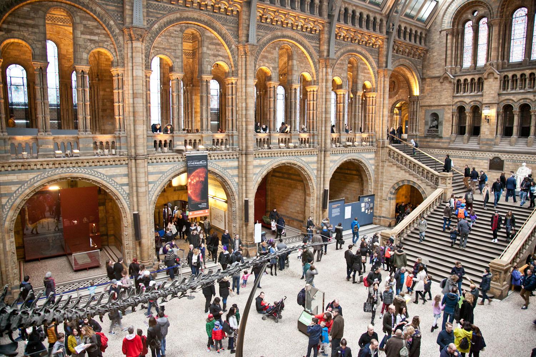 IMG_8352-london-england-natural-history-museum-free-trisa-taro.jpg